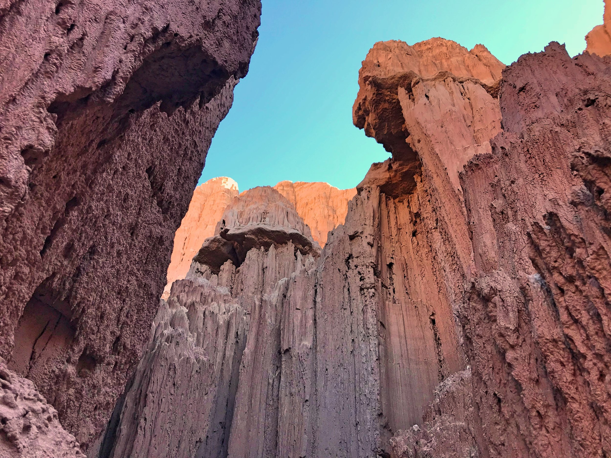 The walls of the gorge are full of interesting layers and formations.