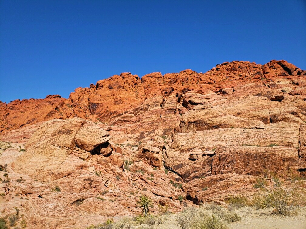 The trail runs underneath the Calico Hills and you can climb on and explore the rocks.