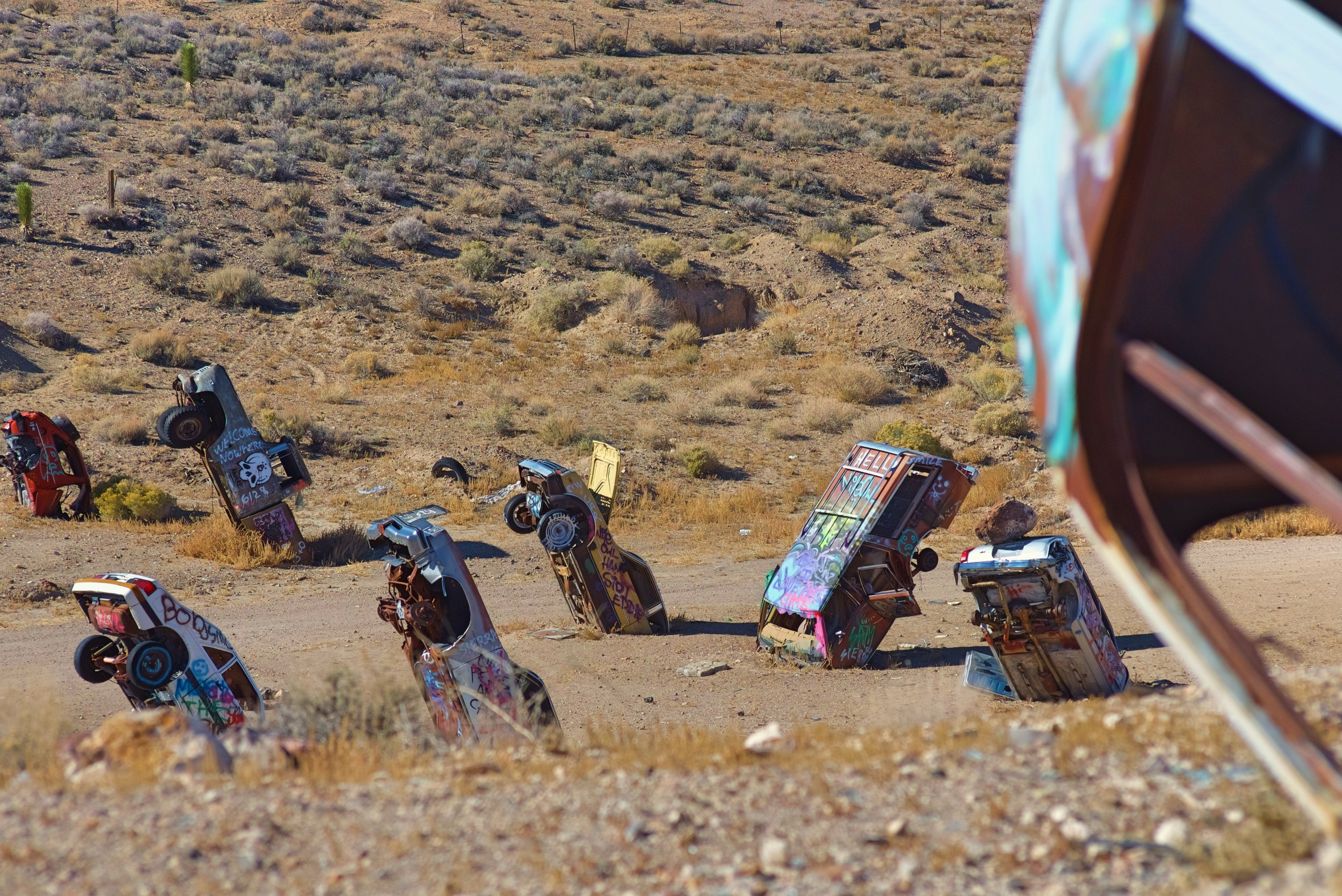 There are probably about 40 cars, trucks, and buses sprouting out of the desert at different angles.