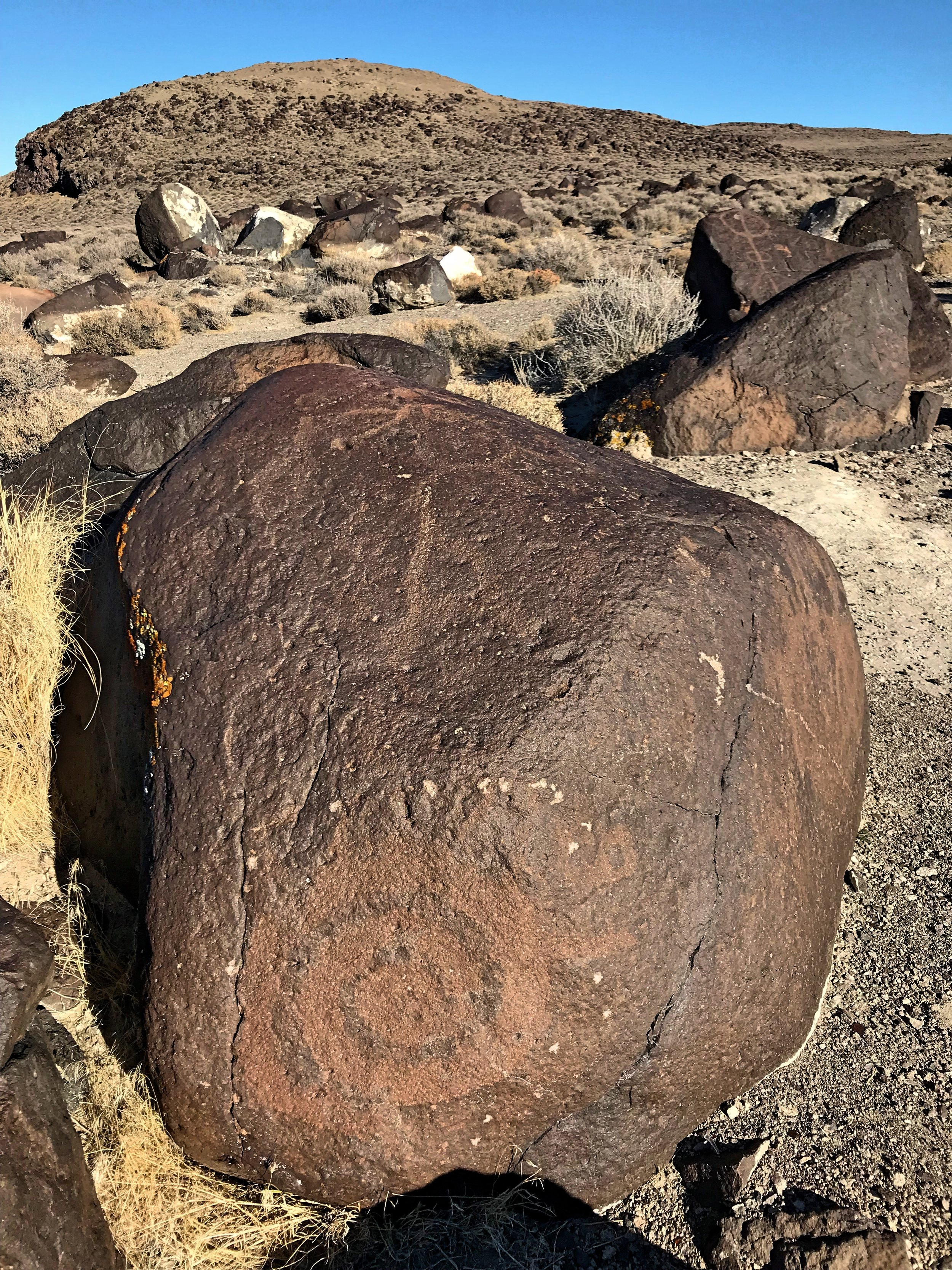The older petroglyphs have wider lines and they have been partially regained their patina, like the spiral near the bottom of this rock.