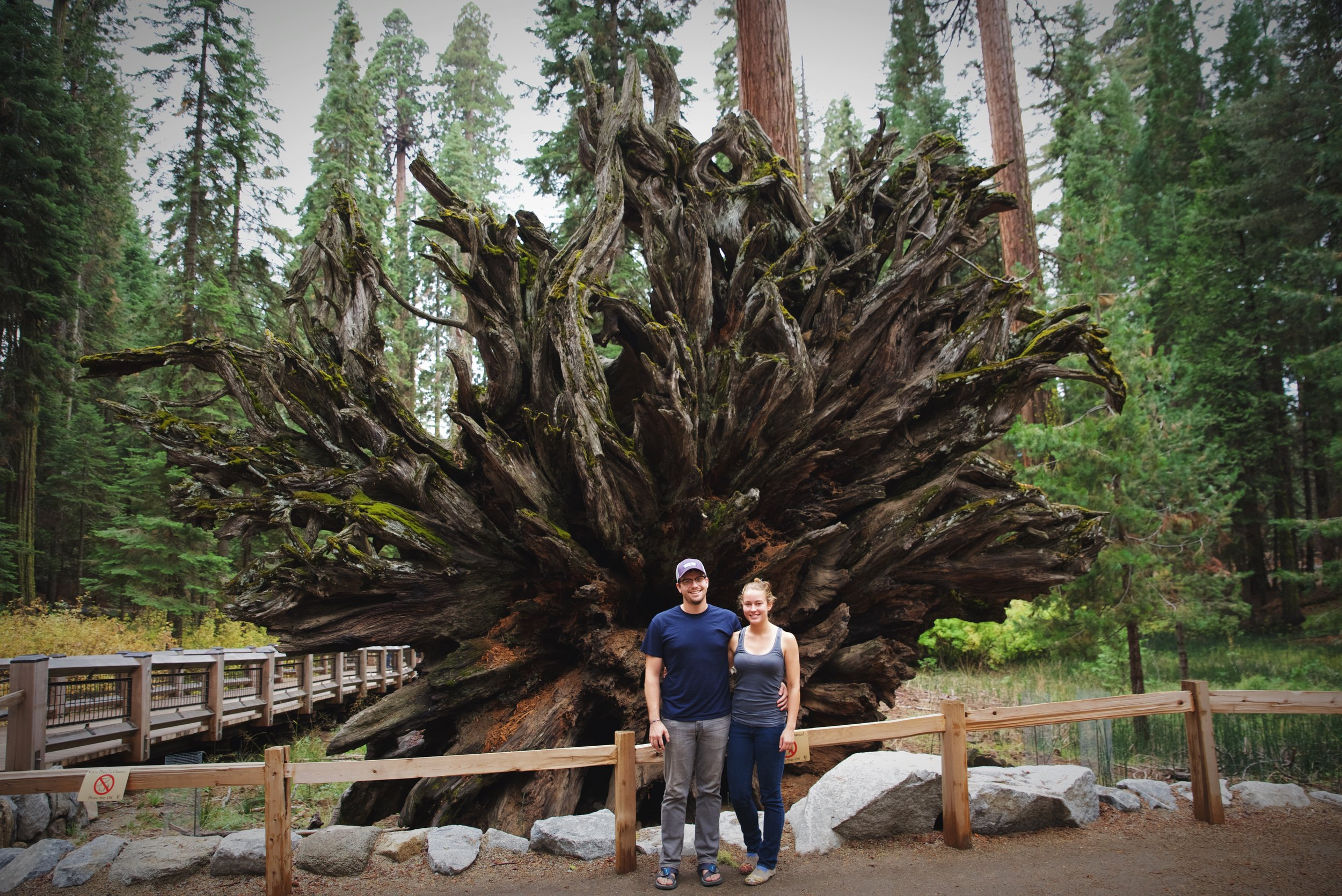 Posing in front of the Fallen Monarch in Mariposa Grove.