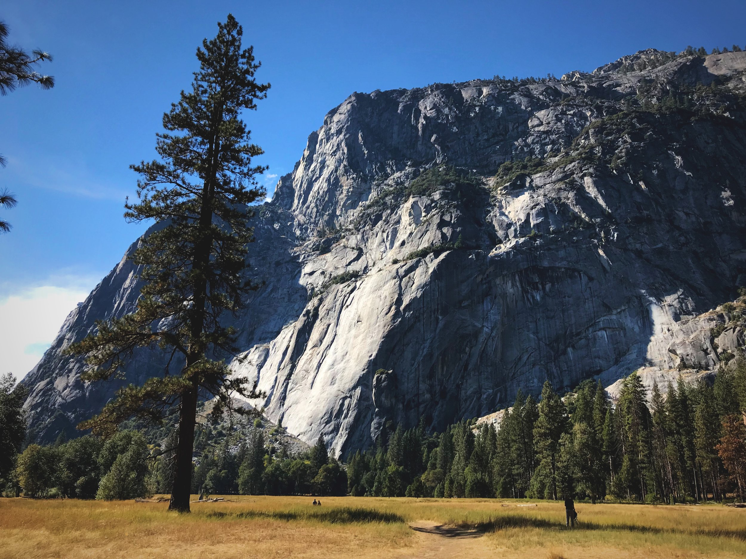 The Yosemite Valley floor is a great place to find flat trails in Yosemite.