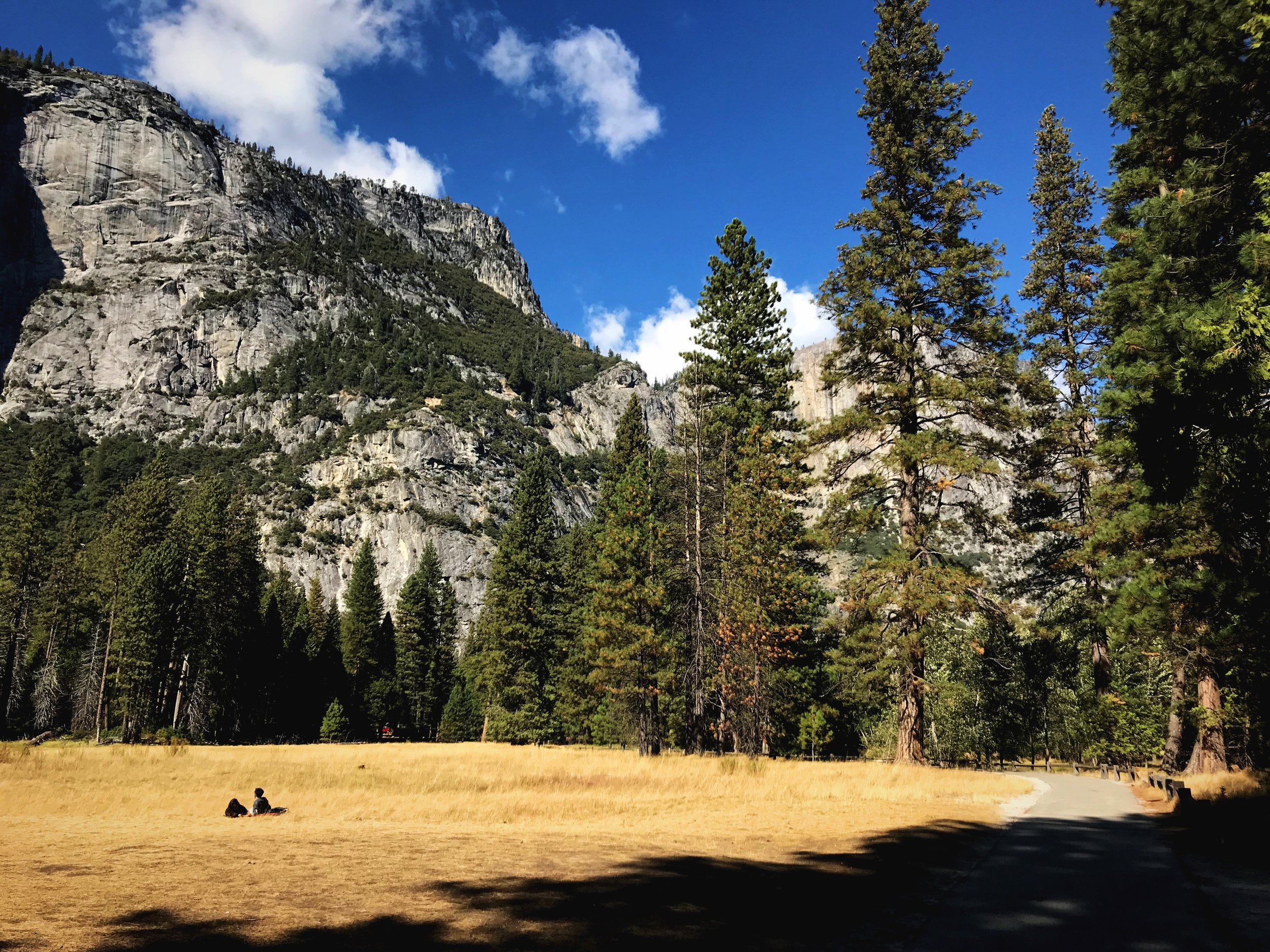 The meadows of Yosemite are the perfect place for a picnic on a sunny fall day.