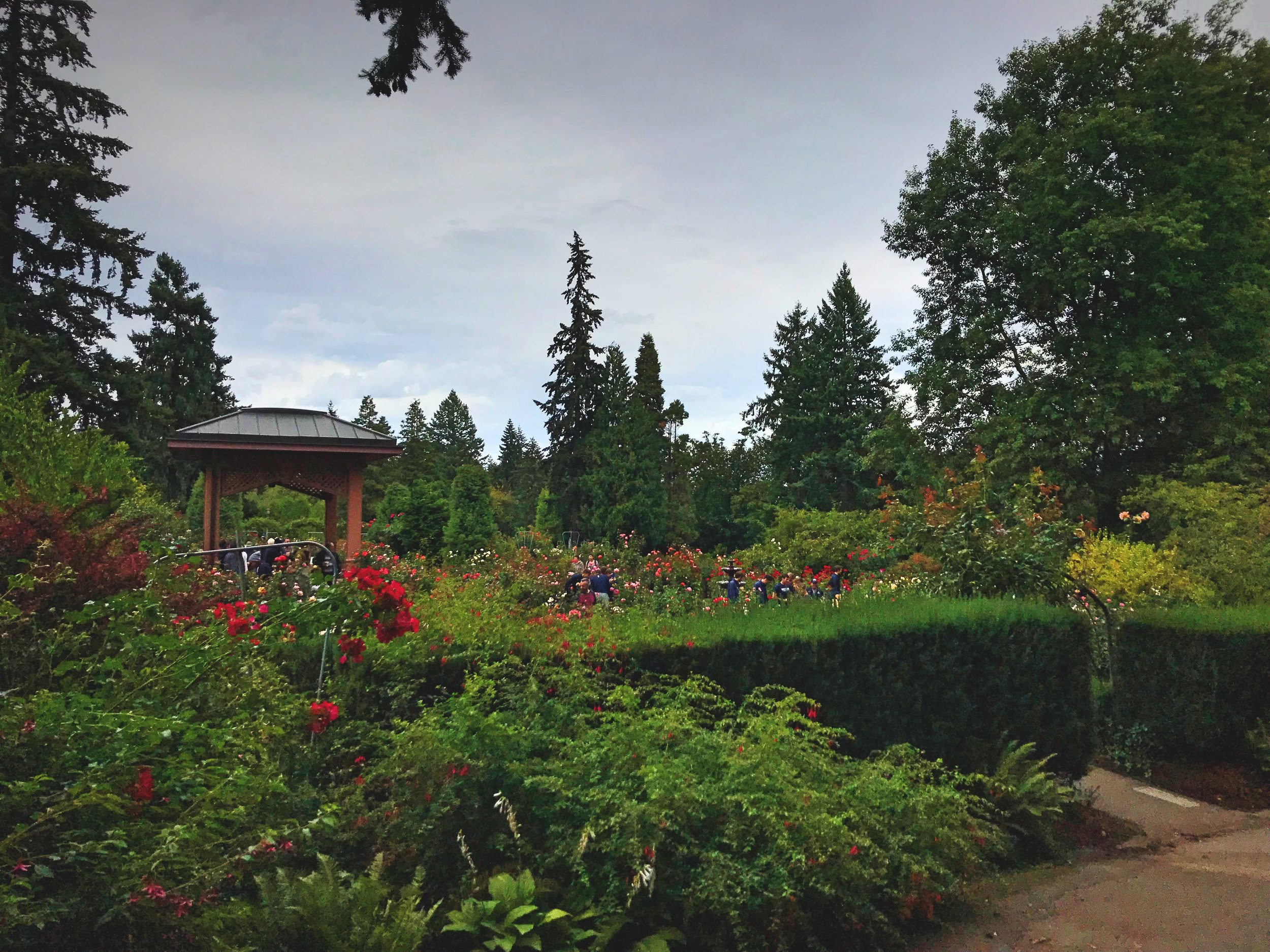 There are small pagodas and gardens within gardens to explore in the rose garden.