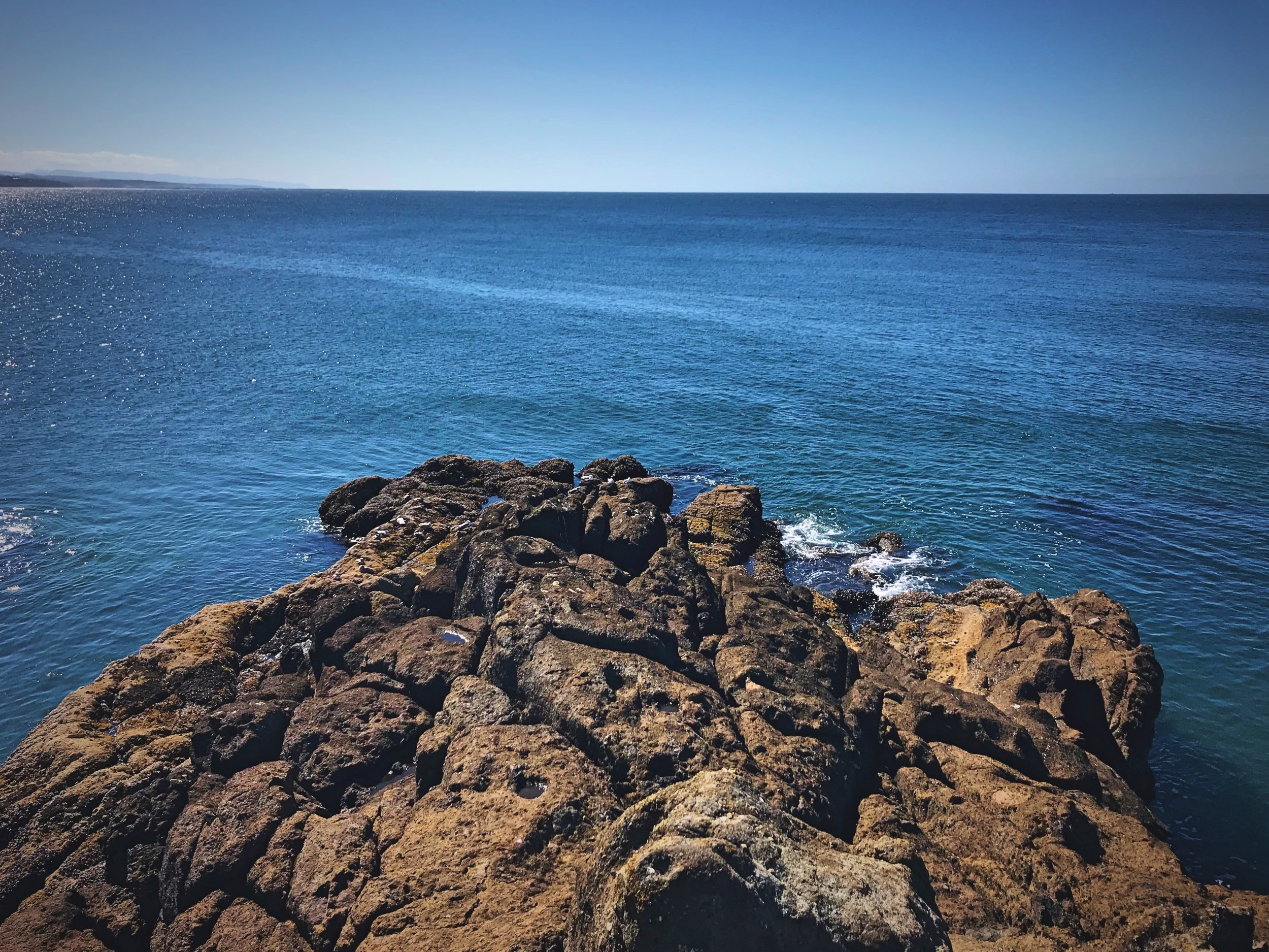 At the end of the Quarry Cove Trail, you can scramble onto outcrops of rock that go out into the cove.