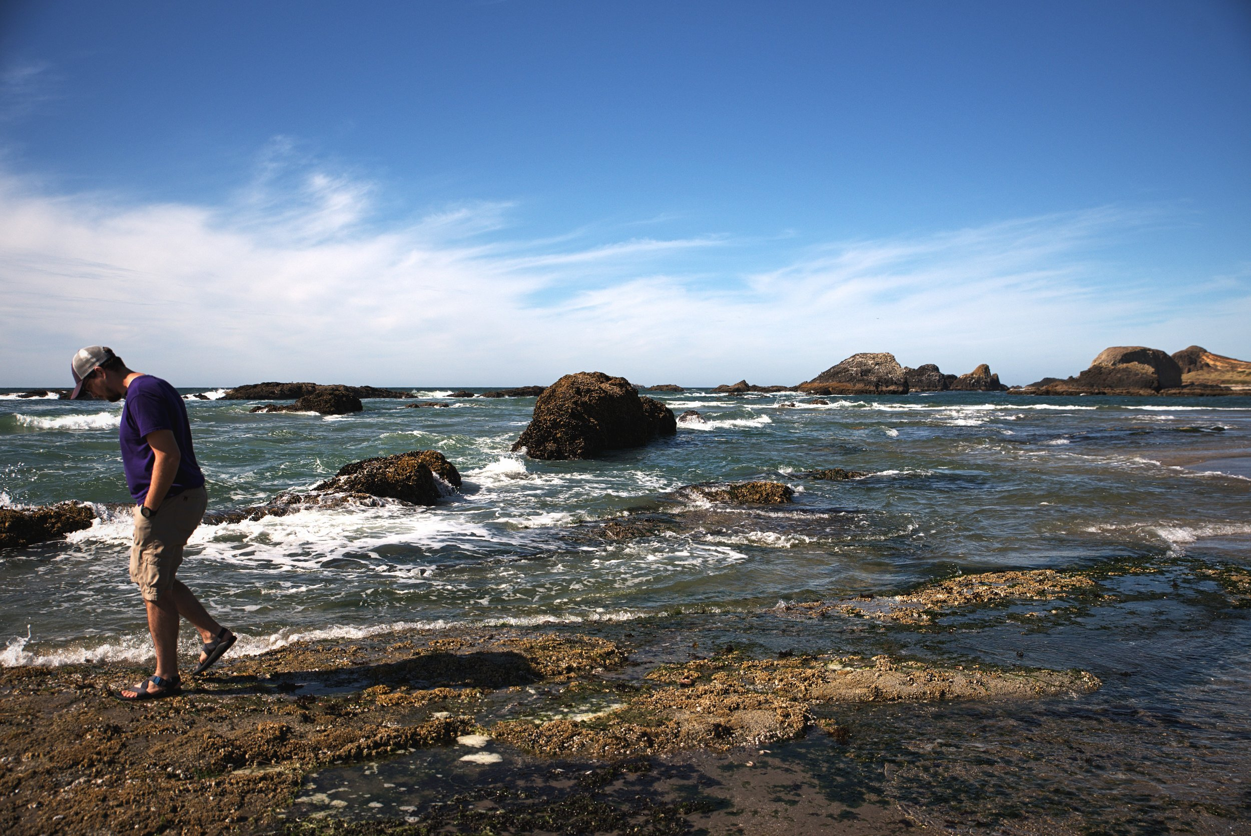 Ian explores some of the inter-tidal zone on the shore at Seal Rock State Park.