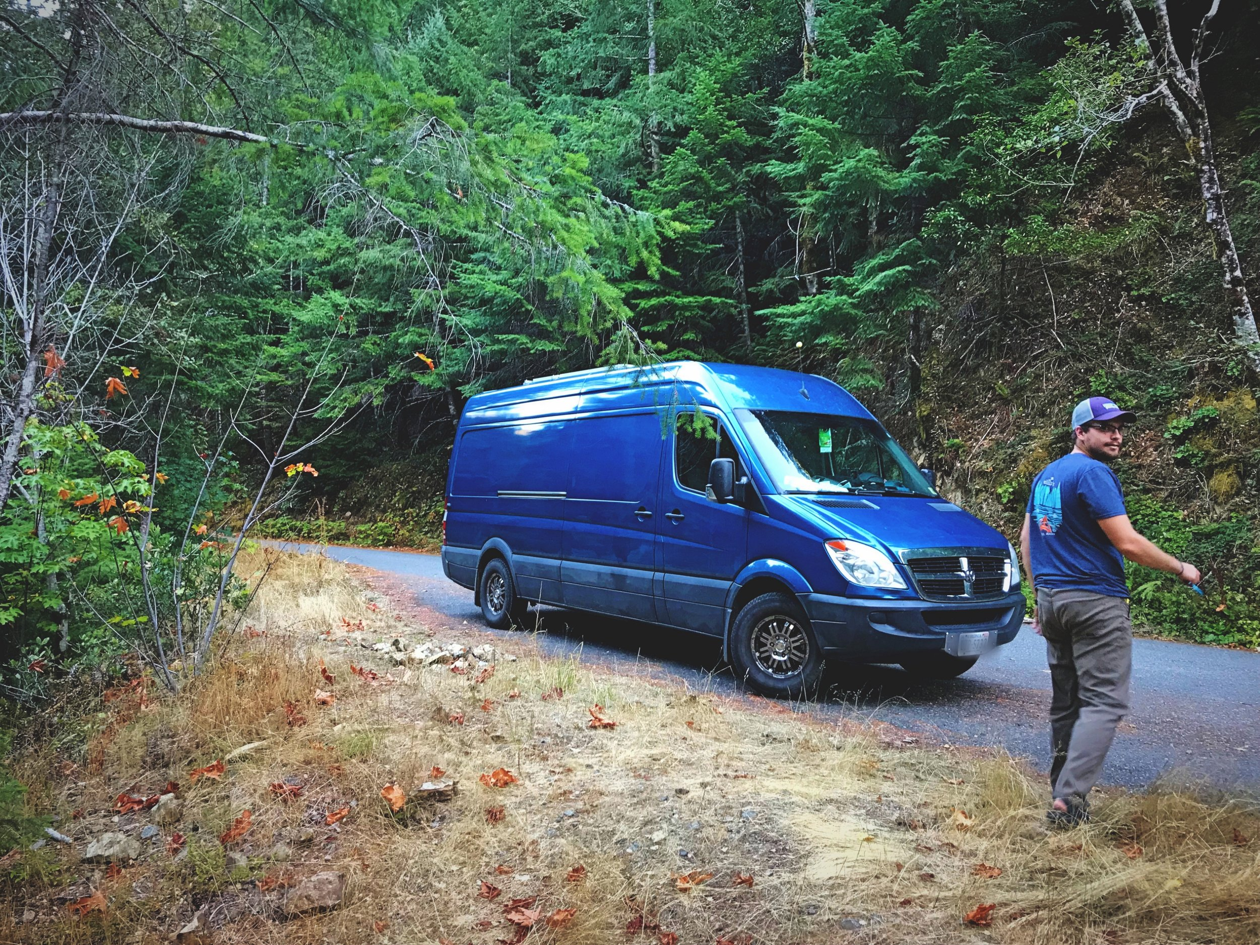 A dispersed camping spot on a forest service road in the Siuslaw National Forest.