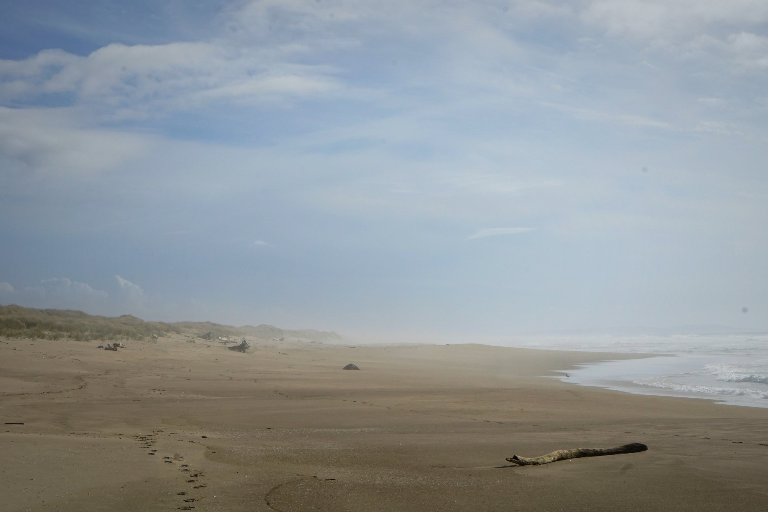Since you have to walk 6 miles through thick sand to get to this beach, you'll likely have the beach all to yourself.
