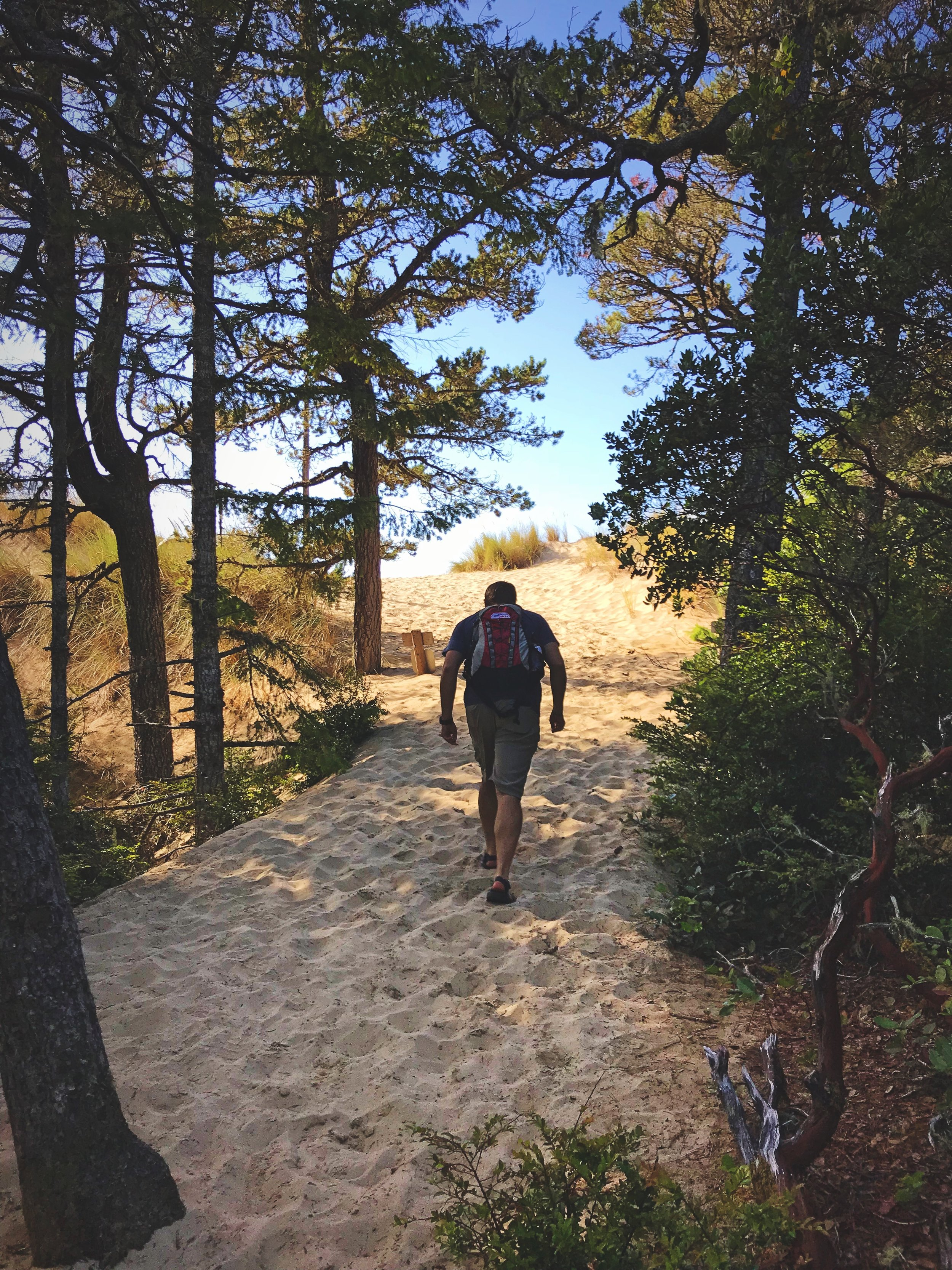 Ian walking through the trees before you arrive at the ocean.