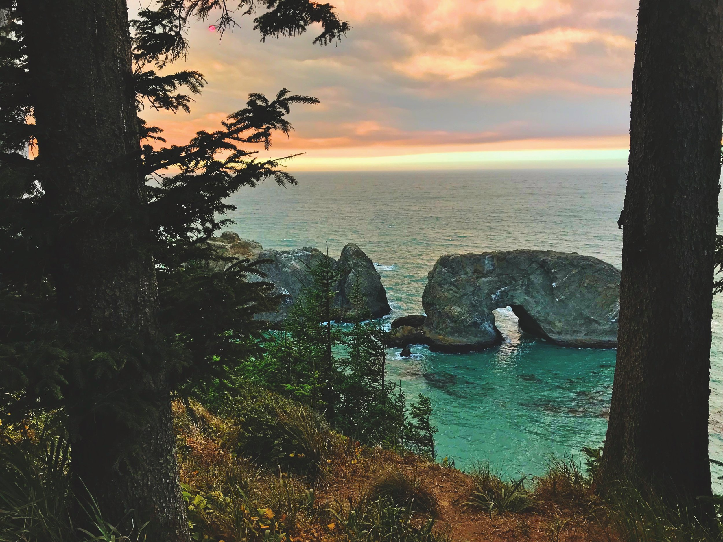 Arch Rock surrounded by the green waters and kelp beds of the southern Oregon coast.