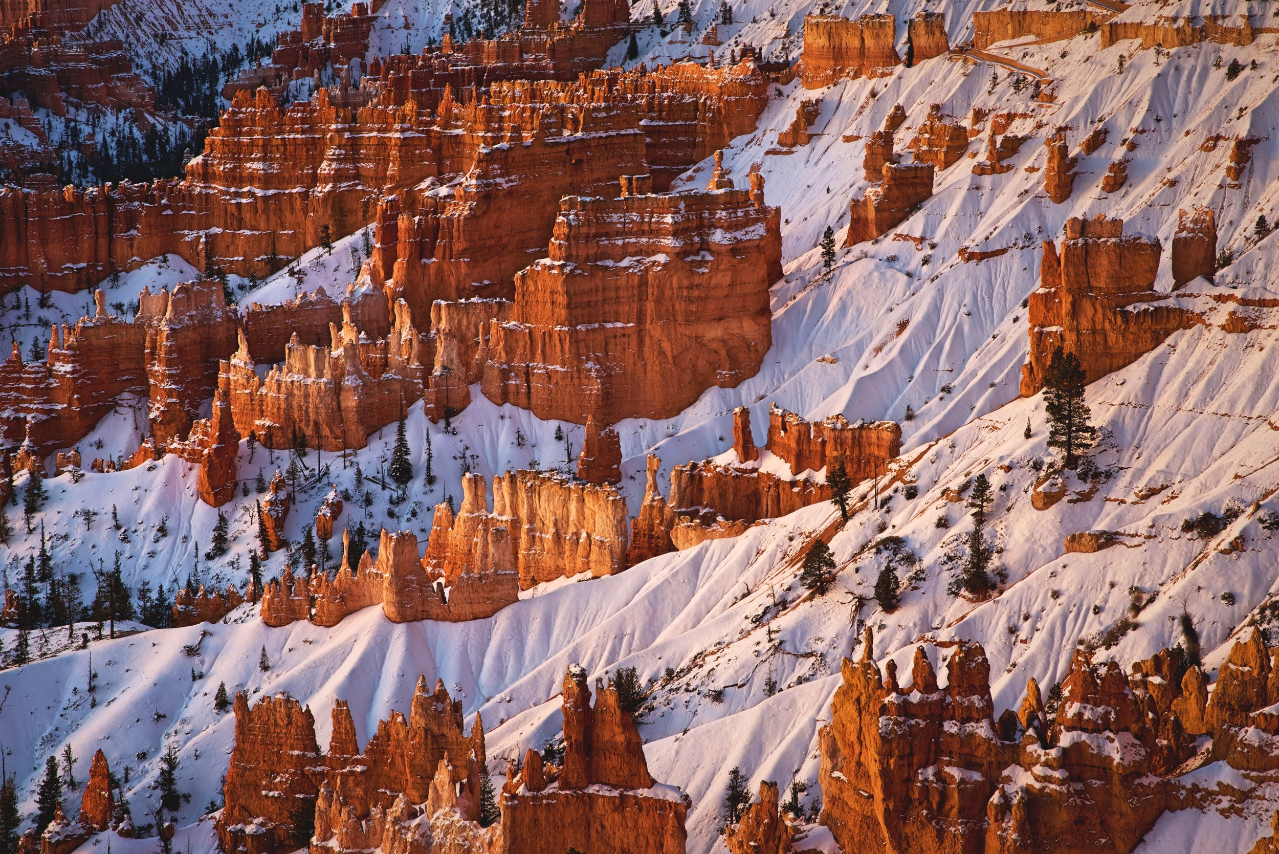 Because Bryce Amphitheater faces east, sunrise is one of the best times to view the hoodoos of Bryce Canyon National Park.