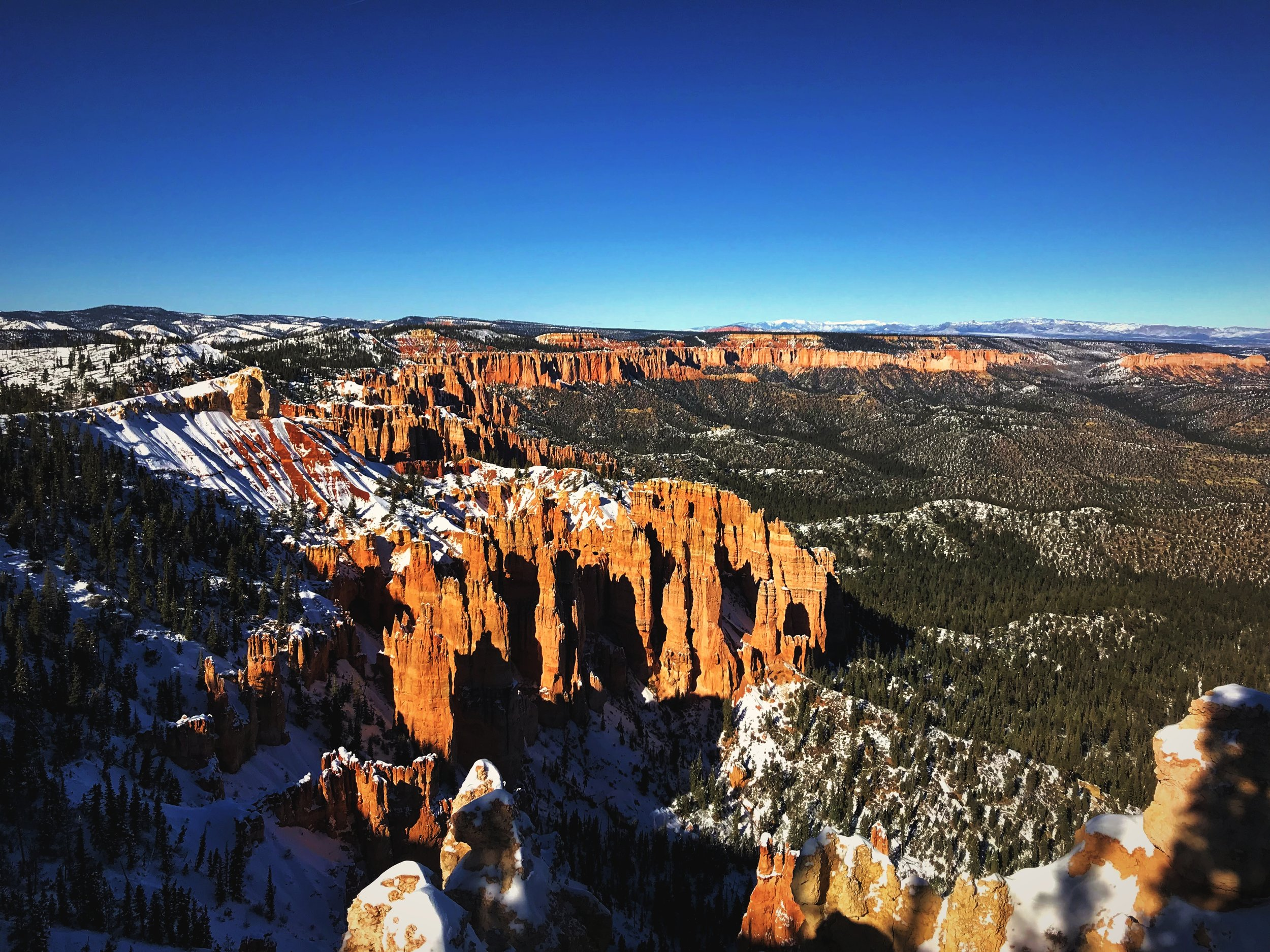 The Bryce Canyon Road follows the rim of the canyon, pictured here.