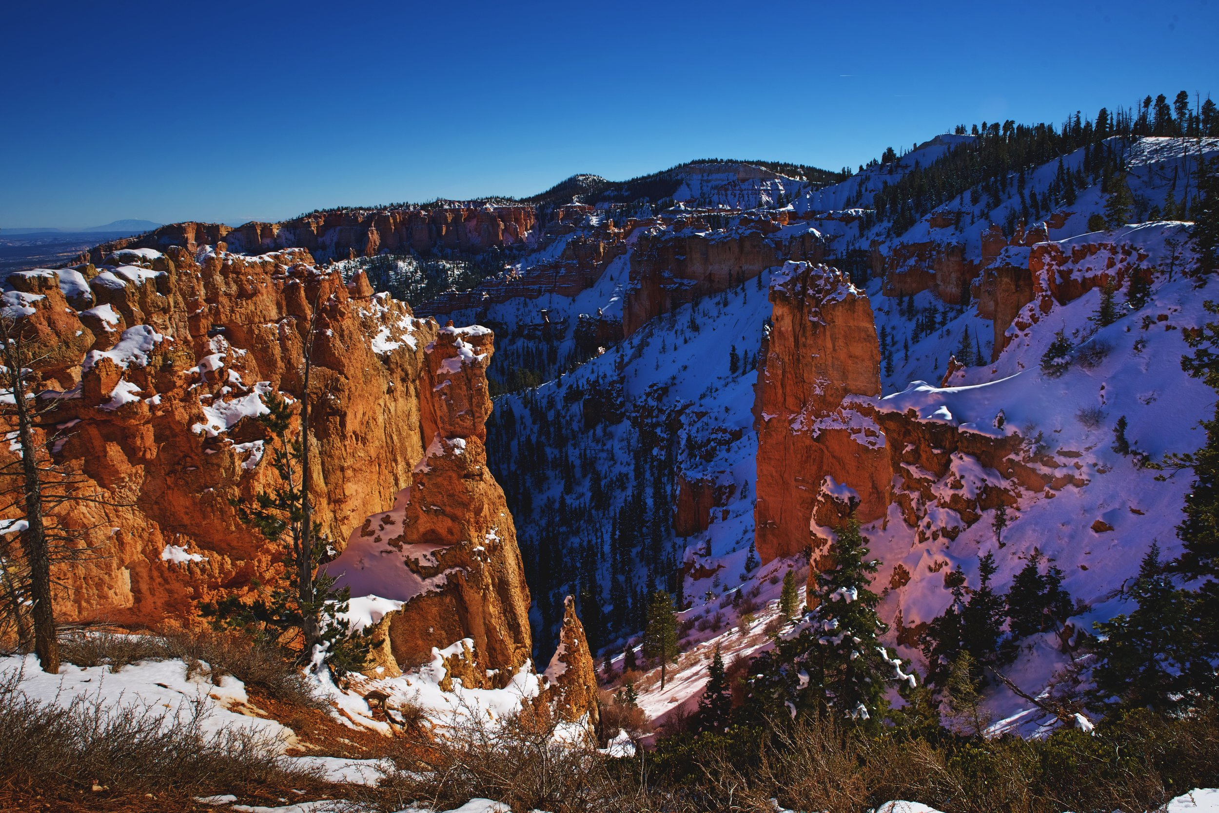 Black Birch Canyon offers a much closer view of the red cliffs of Bryce Canyon.