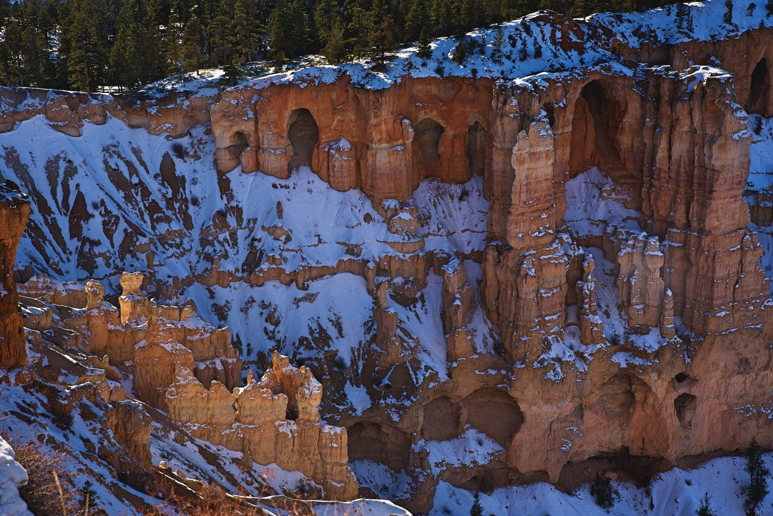 The Grottos at Bryce Point are a series of natural arches along one of the cliffs.