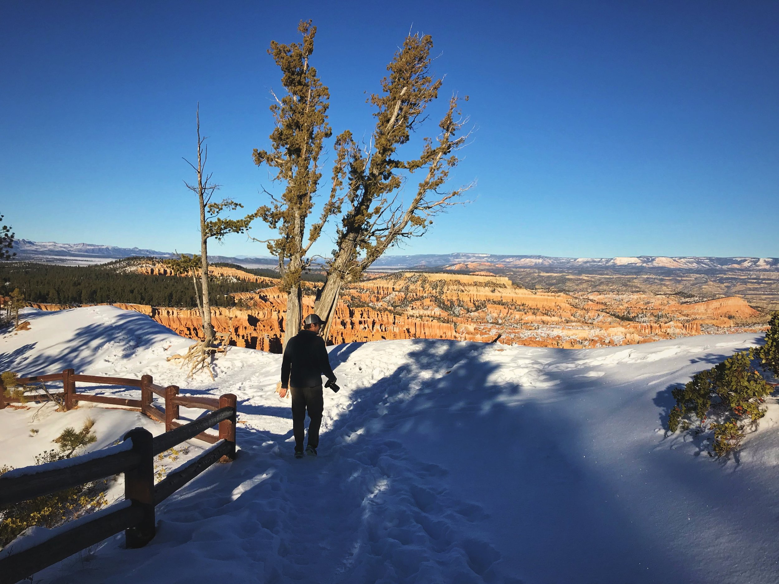 Bryce Canyon was covered in a beautiful sparkly layer of snow when we were visiting in mid-December.