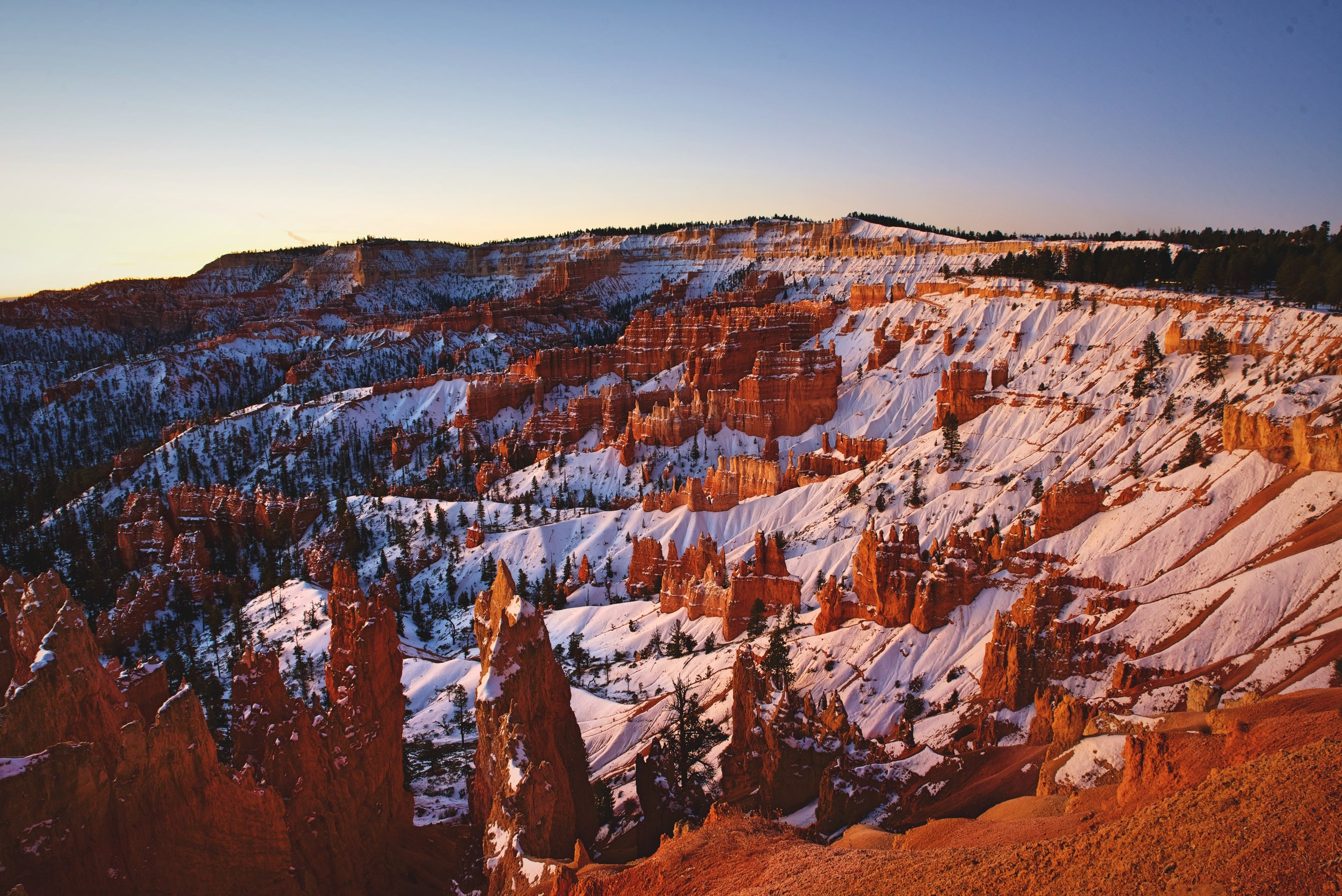 The snow is turned a rosy color when the sun rises in winter.