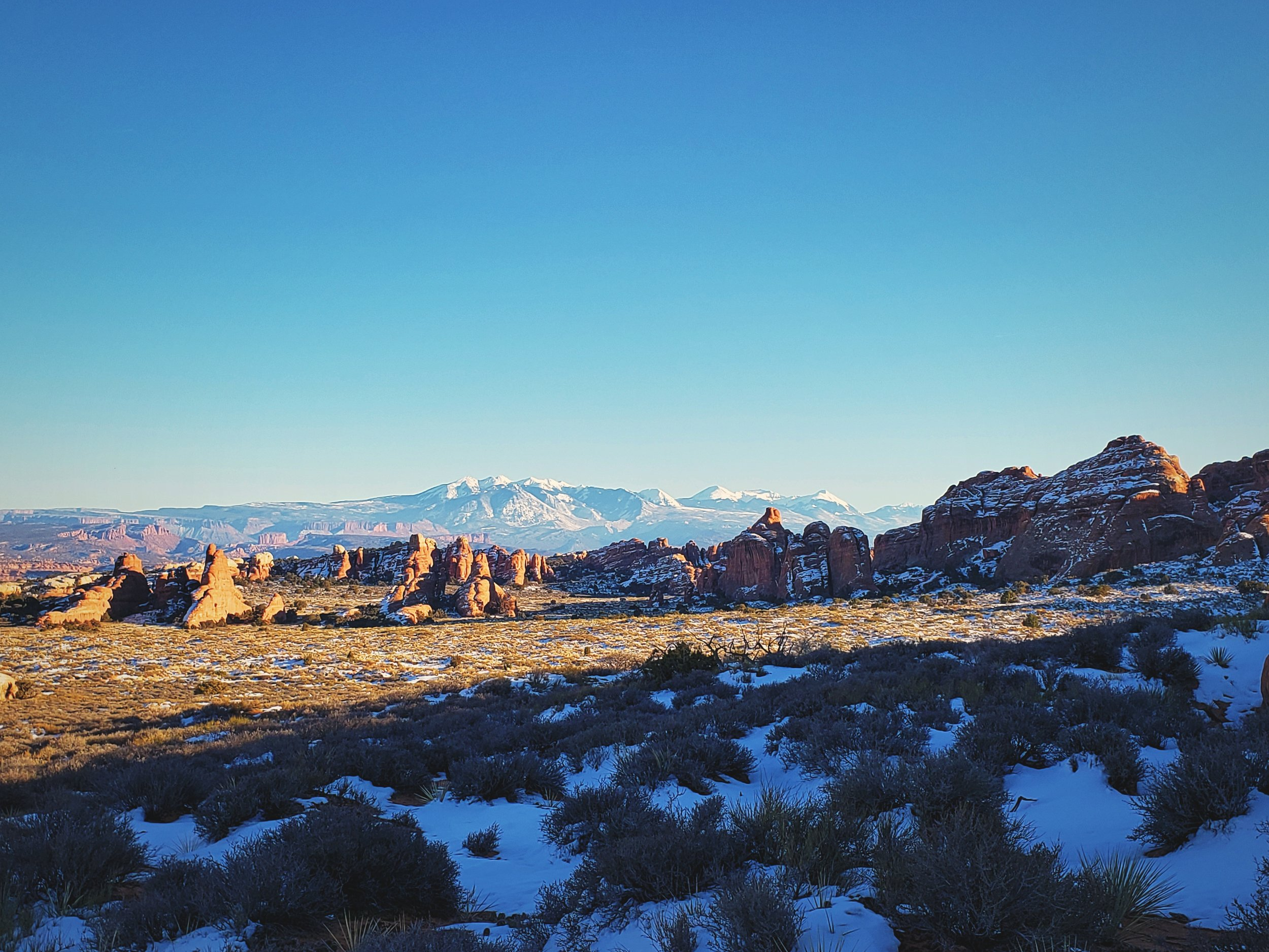 Fins of sandstone rising from the desert with the La Sal Mountains as a backdrop.