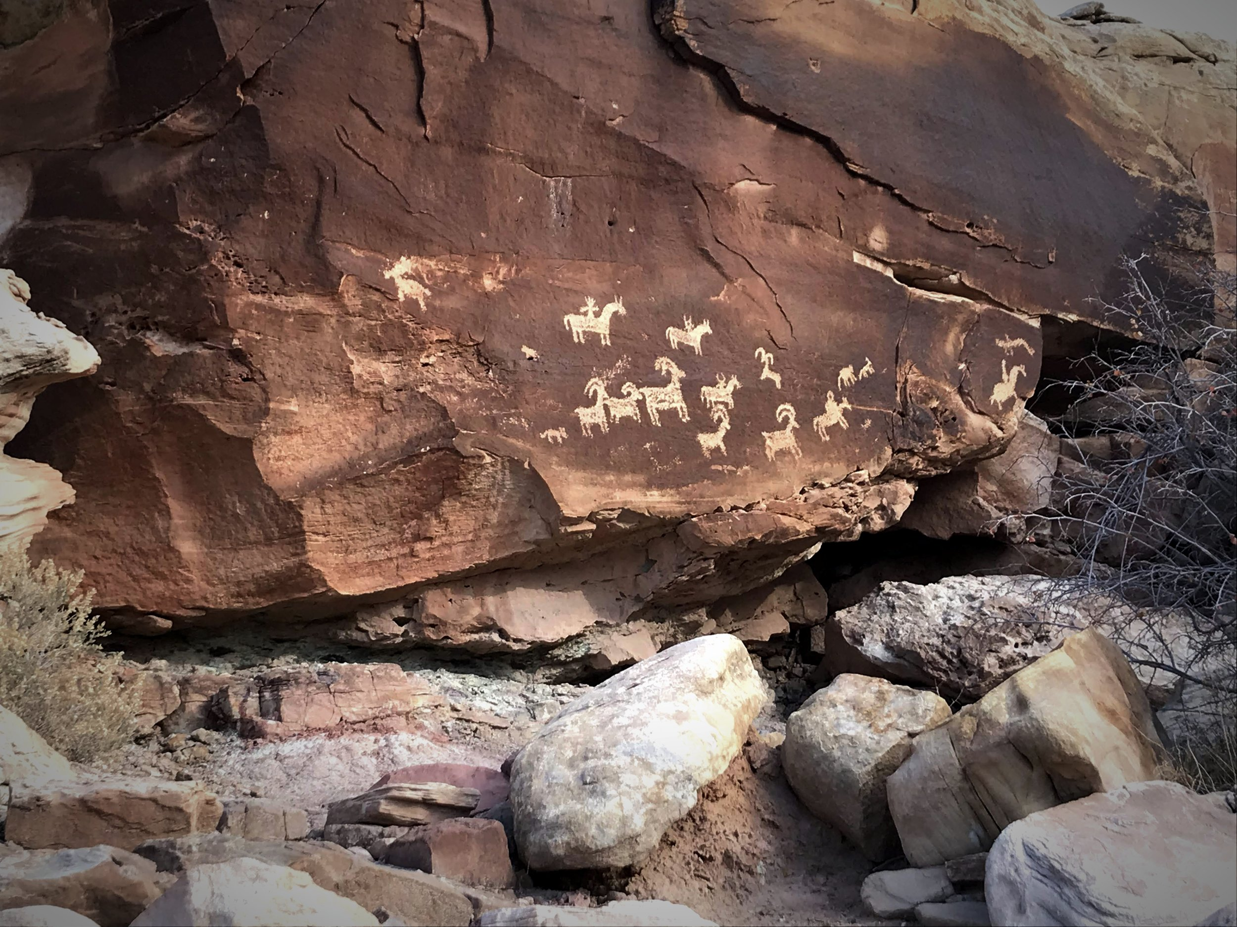 The Ute petroglyphs are really defined in the dark desert varnish on the rock.