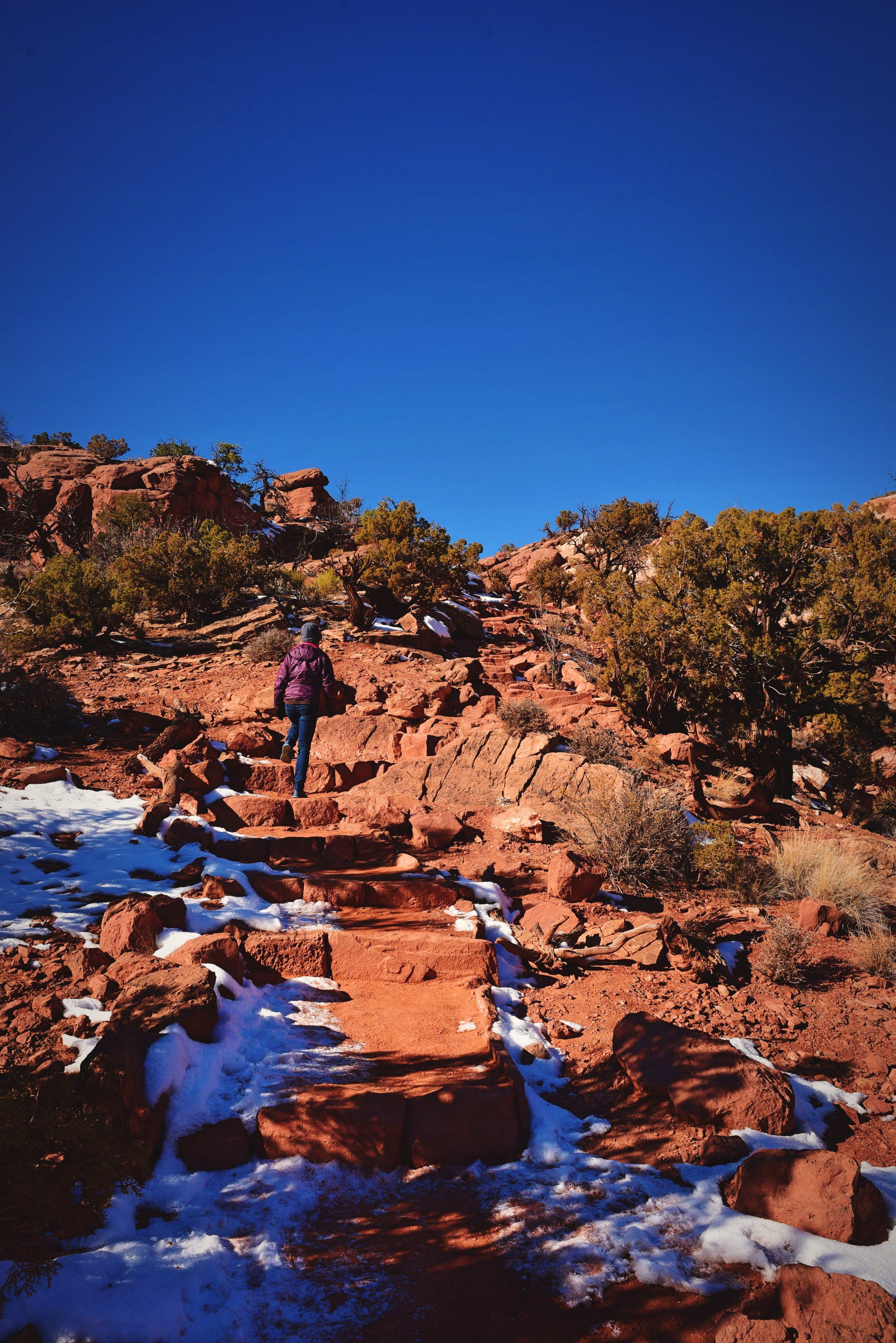 Climbing the steps on the trail to Upheaval Dome.