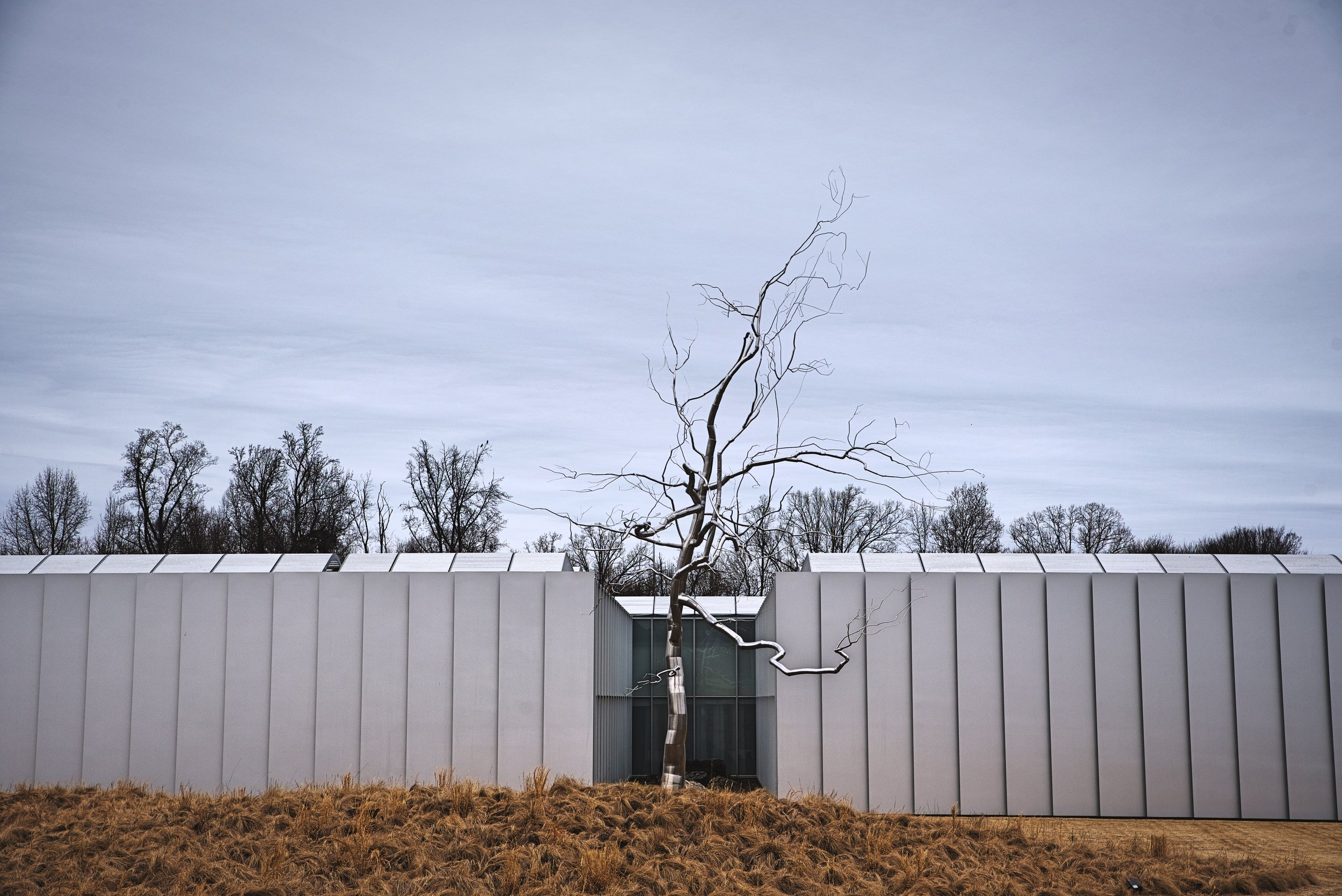There is one of these silver trees by Roxy Paine in the National Gallery of Art Sculpture Garden in DC where we used to live.