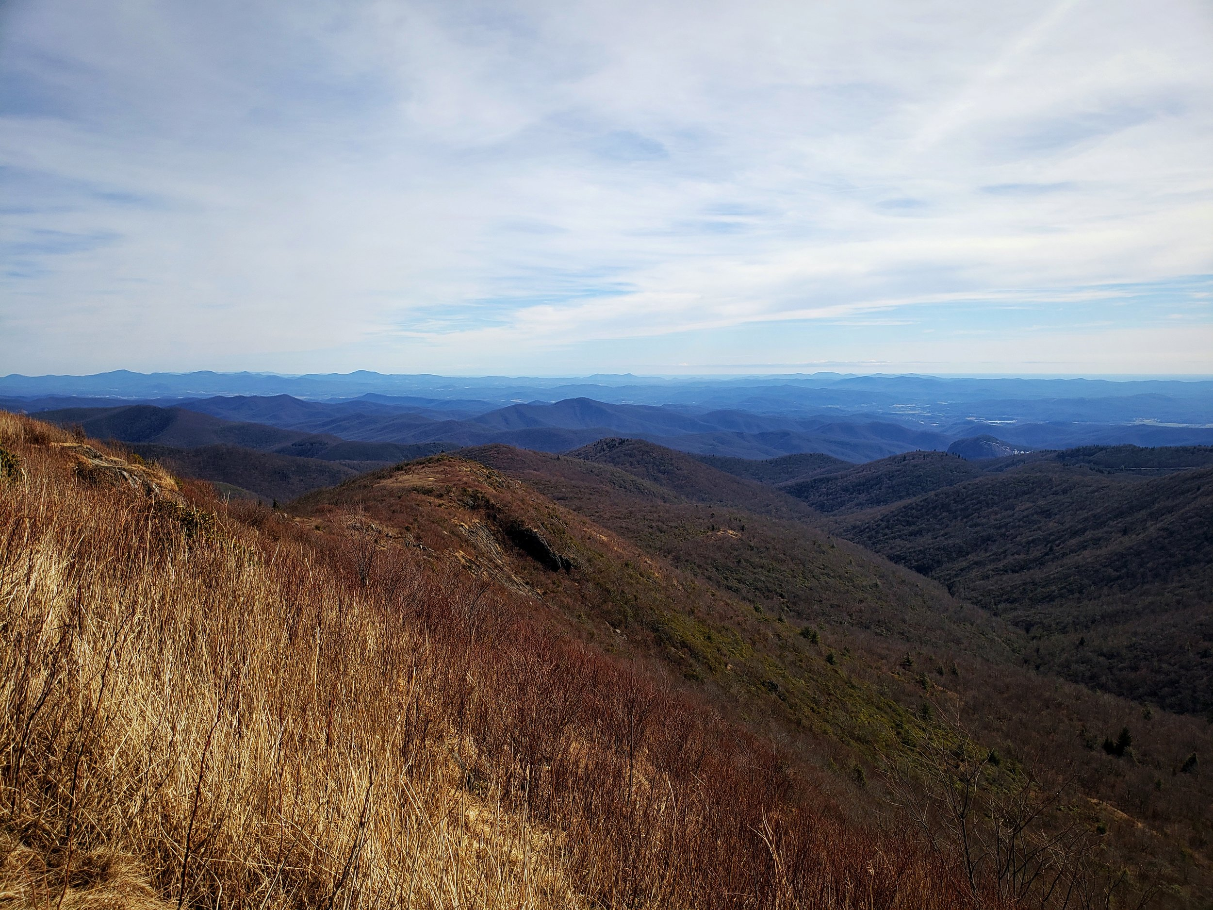 The views along the Blue Ridge Parkway are beautiful, and remarkably blue!