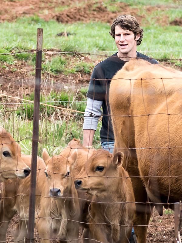 tyler-cows-01.jpg