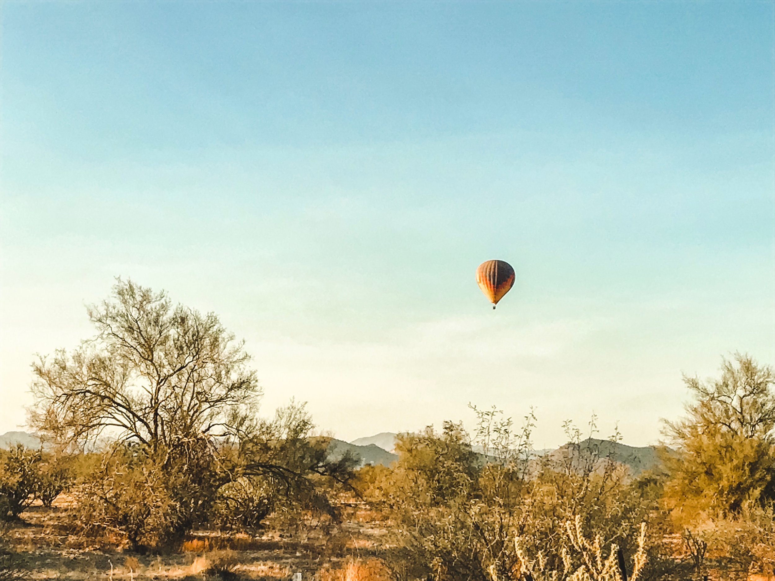 arizona5.jpg