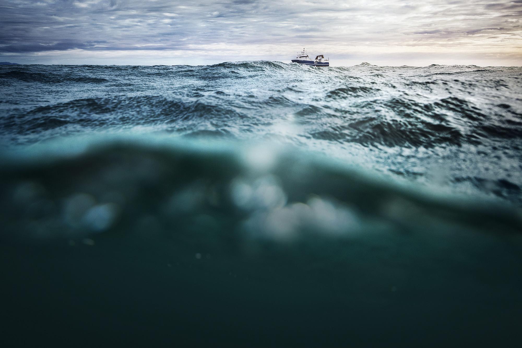 Sealord_Boat.jpg