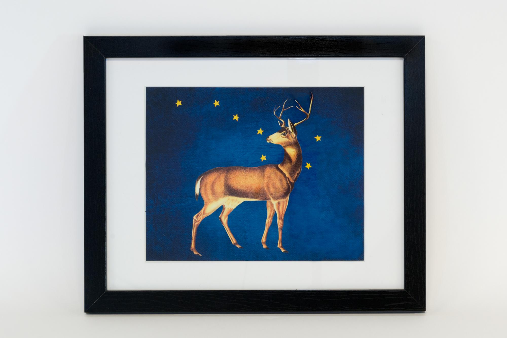 Elk and the Big Dipper