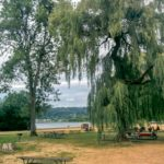 picnic-150x150.jpg