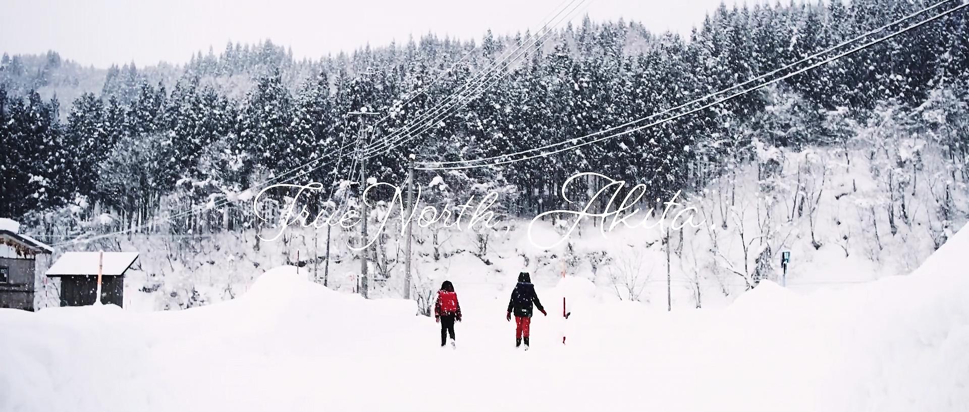 True North, Akita. #2.mp4.00_06_40_06.Still002.jpg