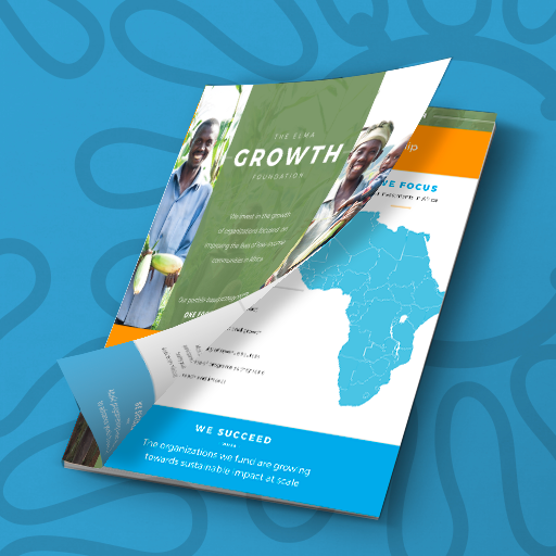Our Investment Framework - The ELMA Growth Foundation's philanthropic strategy is embodied in its Investment Framework, which defines our focus areas, goals, and measures of success.