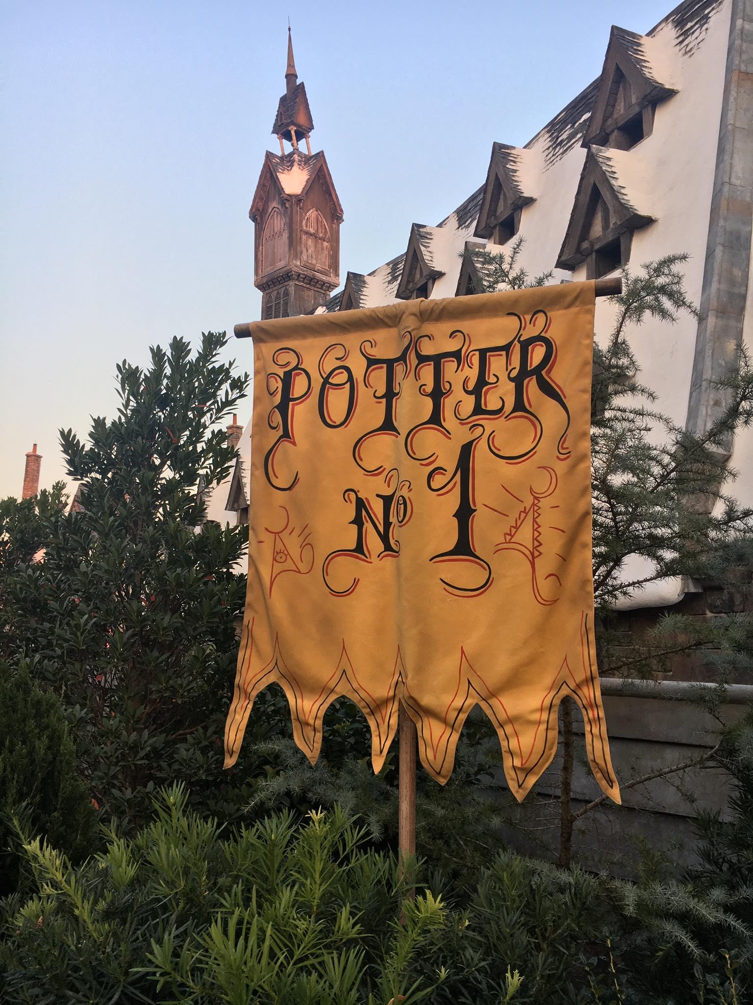 harry potter #42.jpg