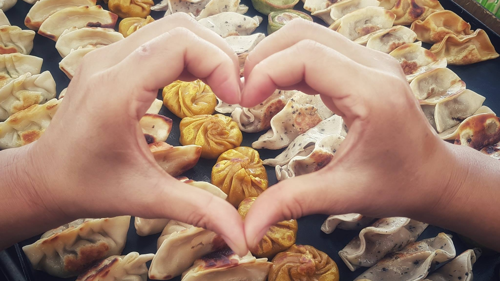 HOUSE OF DUMPLINGS - - a range of HOD's famous handmade dumplings