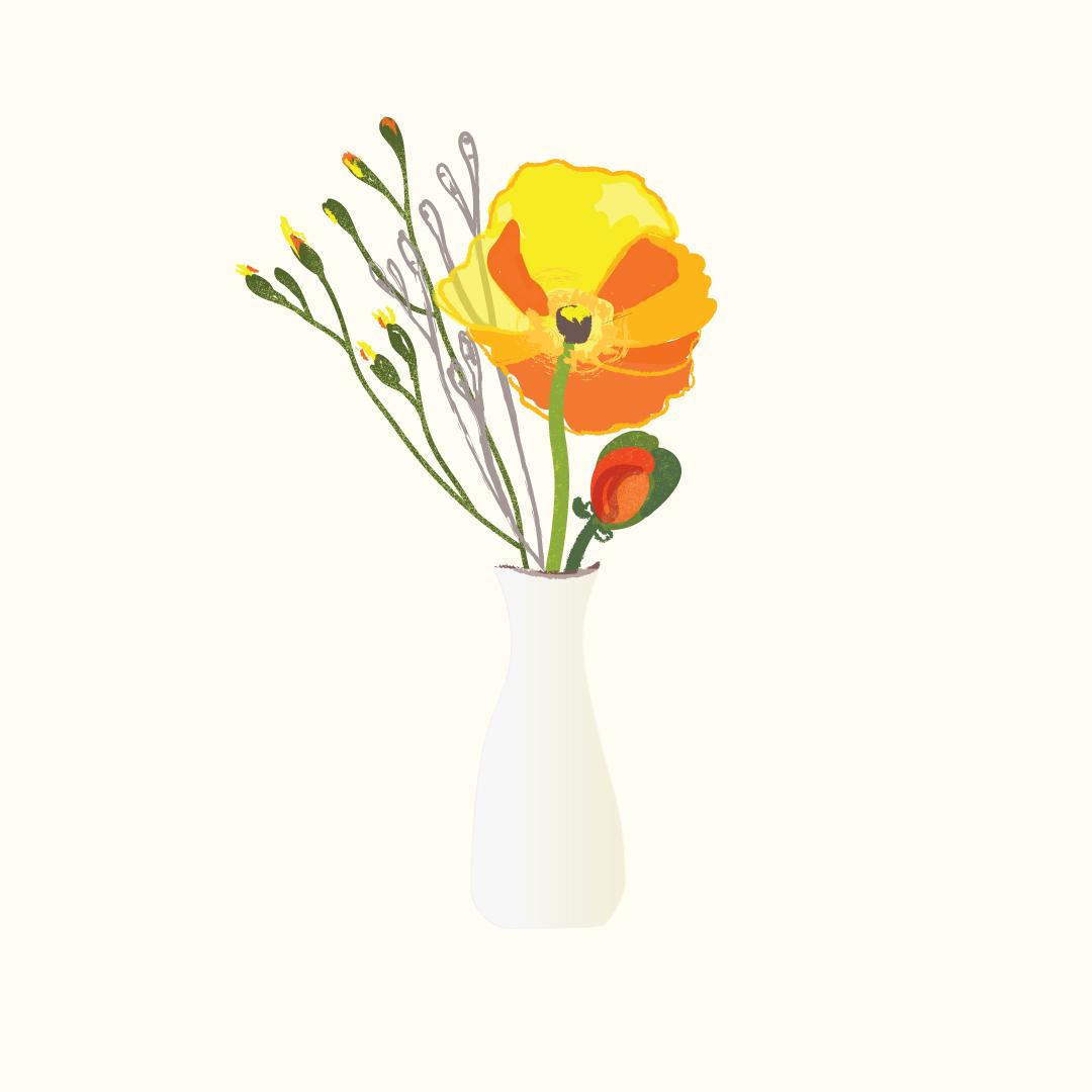 Vase Drawing Kari Livingston.jpg