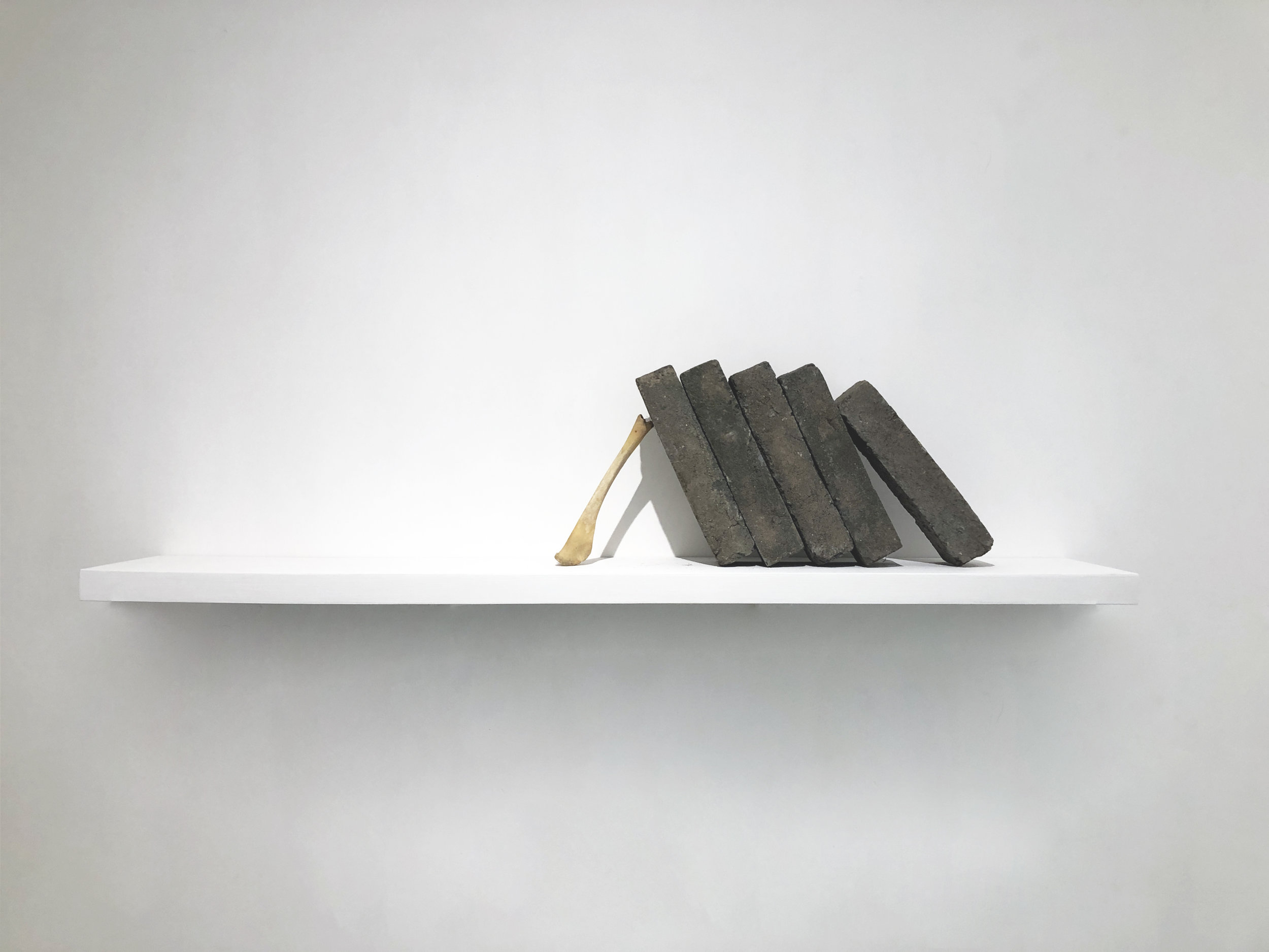 蕭昱, 風景 No. 5, 青磚、動物骨, 尺寸可變, 2011