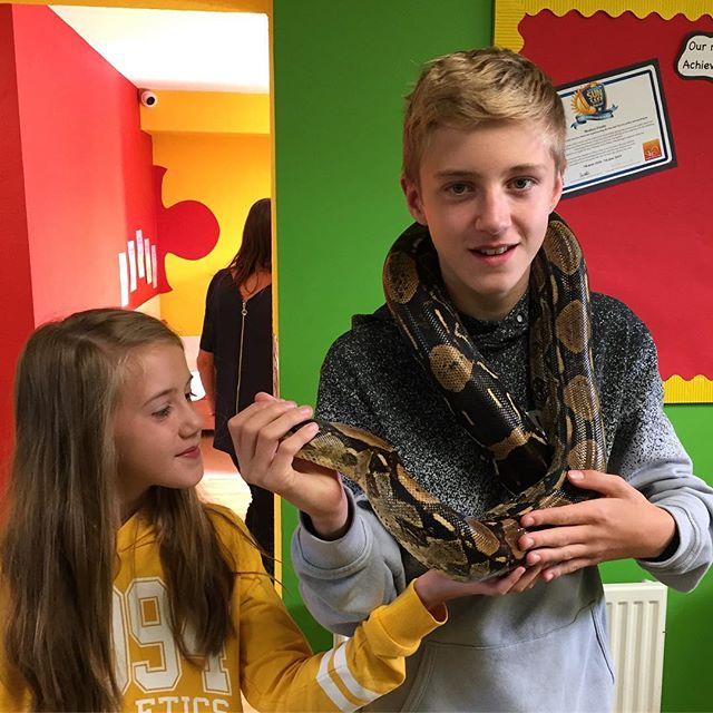 Visiting @monkeypuzzleaylesbury recently for their annual Funday🐍 #junglejuniors #exoticanimalsencounter #schoolvisits #nurseryvisits #opendays #youthcentres #birthdayparties #education #interactive #animalhandling