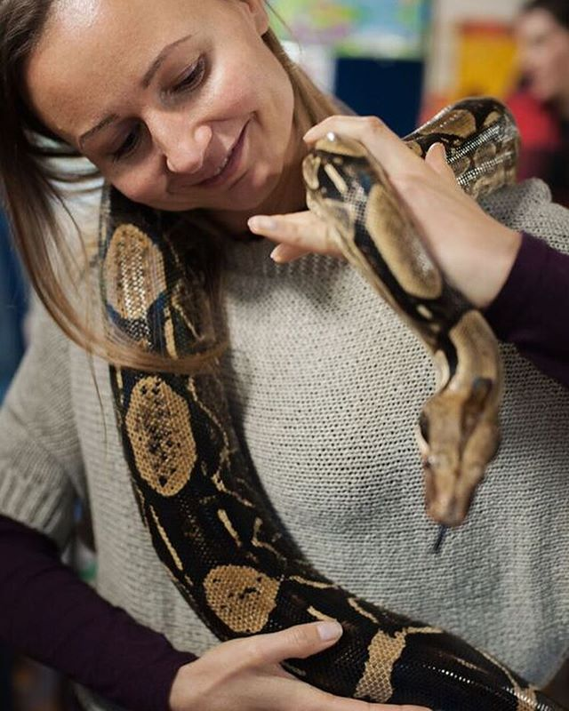#junglejuniors #animalencounters #animalhandling #schoolvisits #youthcentres #birthdayparties #hertfordshire #interactive