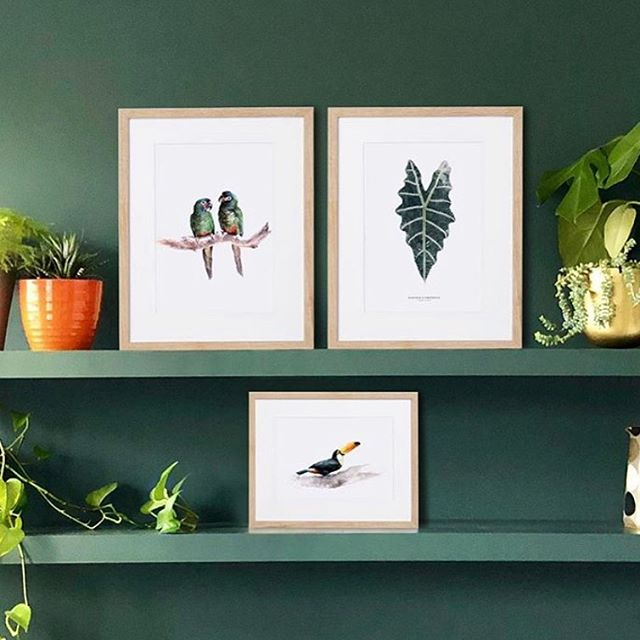 "Green. We love it. And we also love pictures propped up on a shelf. These beautiful prints from @missalignedlondon - exquisite hand-painted leaves and tropical birds look gorgeous centre stage amongst the plants and foliage. . And the lovely participants at our workshop on Saturday will receive one of these exquisite prints from @missalignedlondon in their goody bags! As well as a sourcing guide created by us!  We will also be sharing lots of interiors tips at our workshop ""HOW TO USE  EVERYDAY OBJECTS IN UNUSUAL WAYS"" taking place at @interiorjunction this Saturday at 2pm. . And there'll be more juicy tips on our panel talk ""Decorating & Styling your Home"" at 2pm on Sunday 15th Sept with an amazing line-up: Paula @hillhousevintage Medina @grillodesigns Ruth @bourne_ruth and us. . There are many more fabulous panels and workshops taking place at @interiorjunction all weekend plus music, food and live demos. We've tagged as many people as Instagram will allow us. Who else is coming? We'd love to see you."