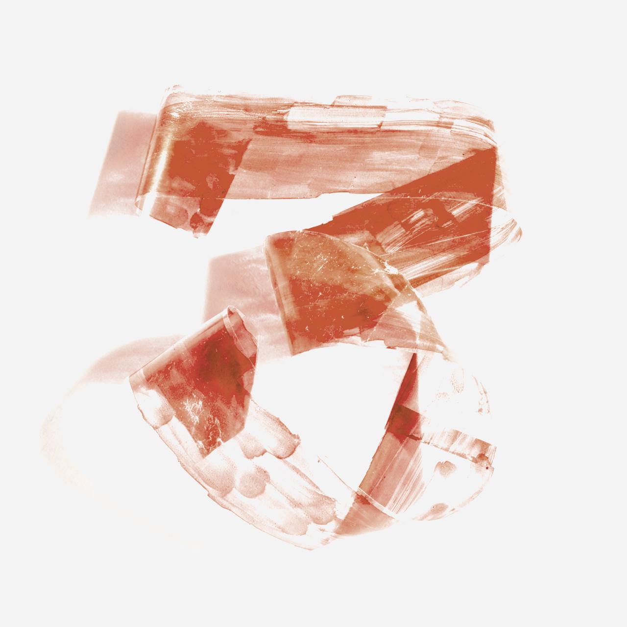 N - Deze letter, gemaakt van zeewier, is alleen te zien vanaf een bepaald standpunt.