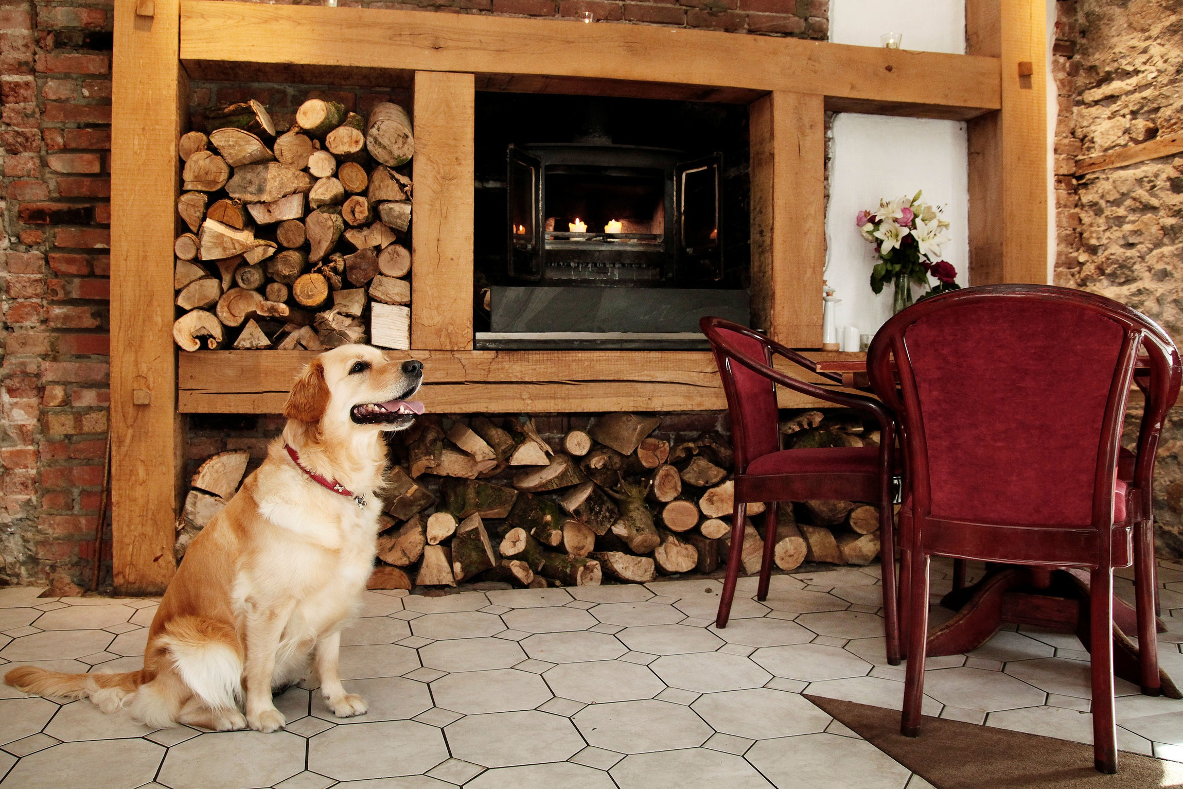 The dog-friendly bar area at the Oxwich Bay Hotel