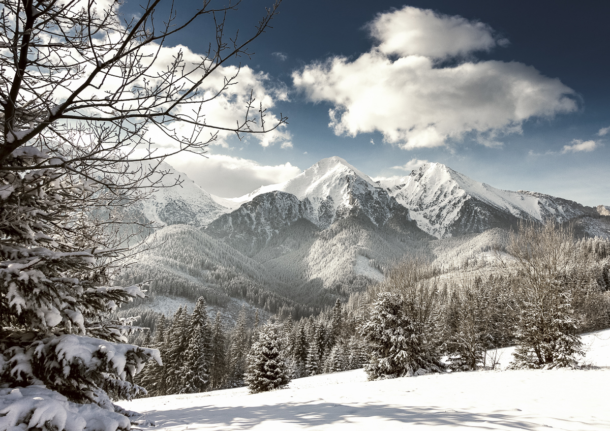 © 2018 • Belianske Tatry —  Kúpiť ako foto-obraz