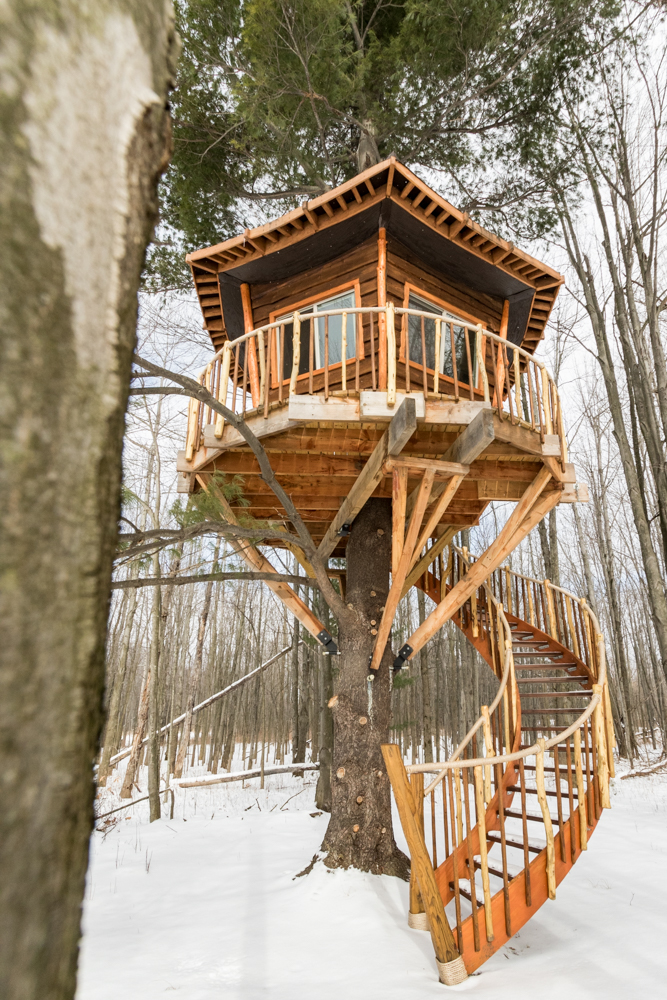 Custom treehouse with spiral staircase