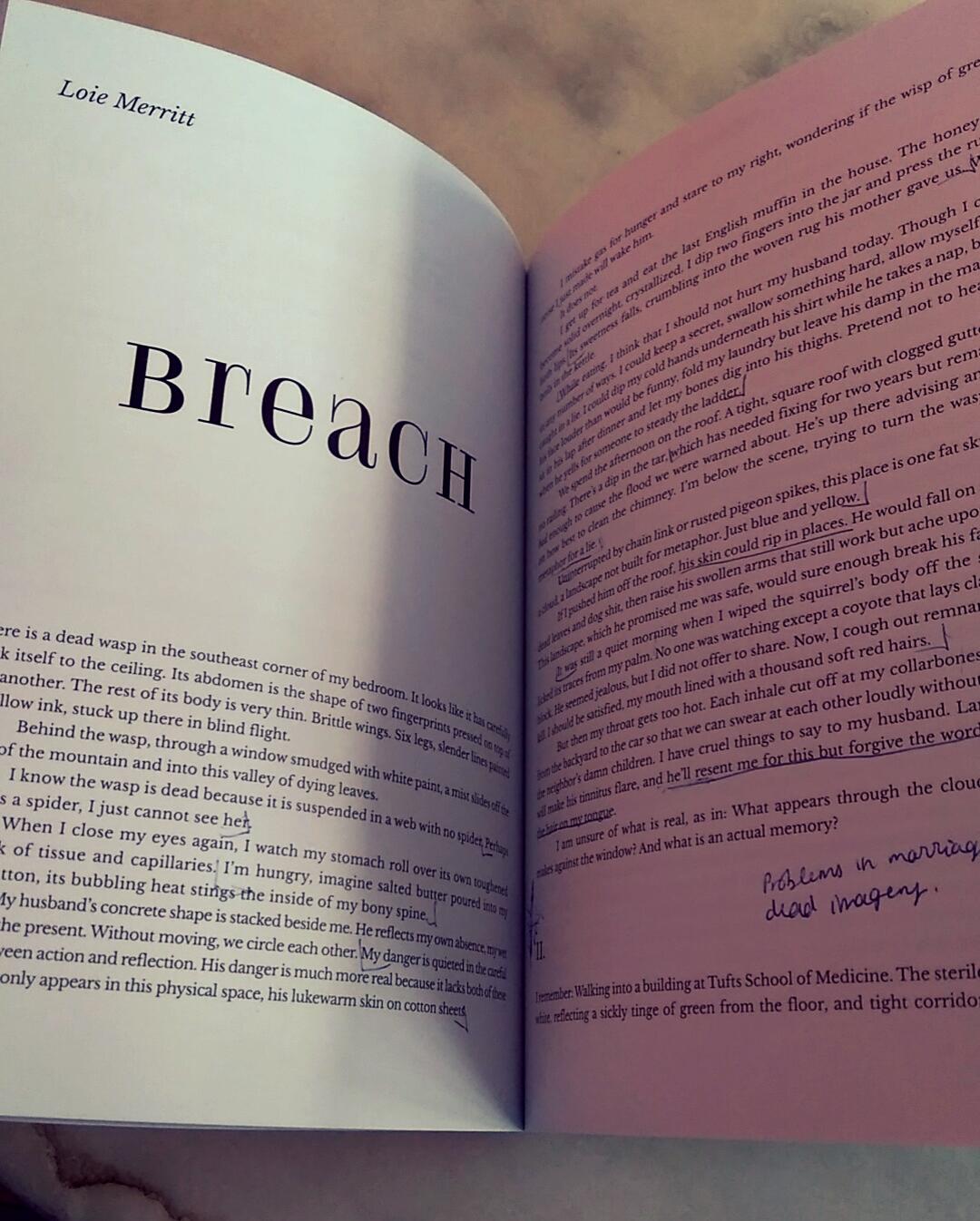 Breach   by Loie Merritt