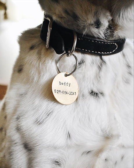 Pet Tag - Our sweet pup's birthday is in February so we always celebrate her during Valentine's too! Pet tags come in copper, brass, and silver!