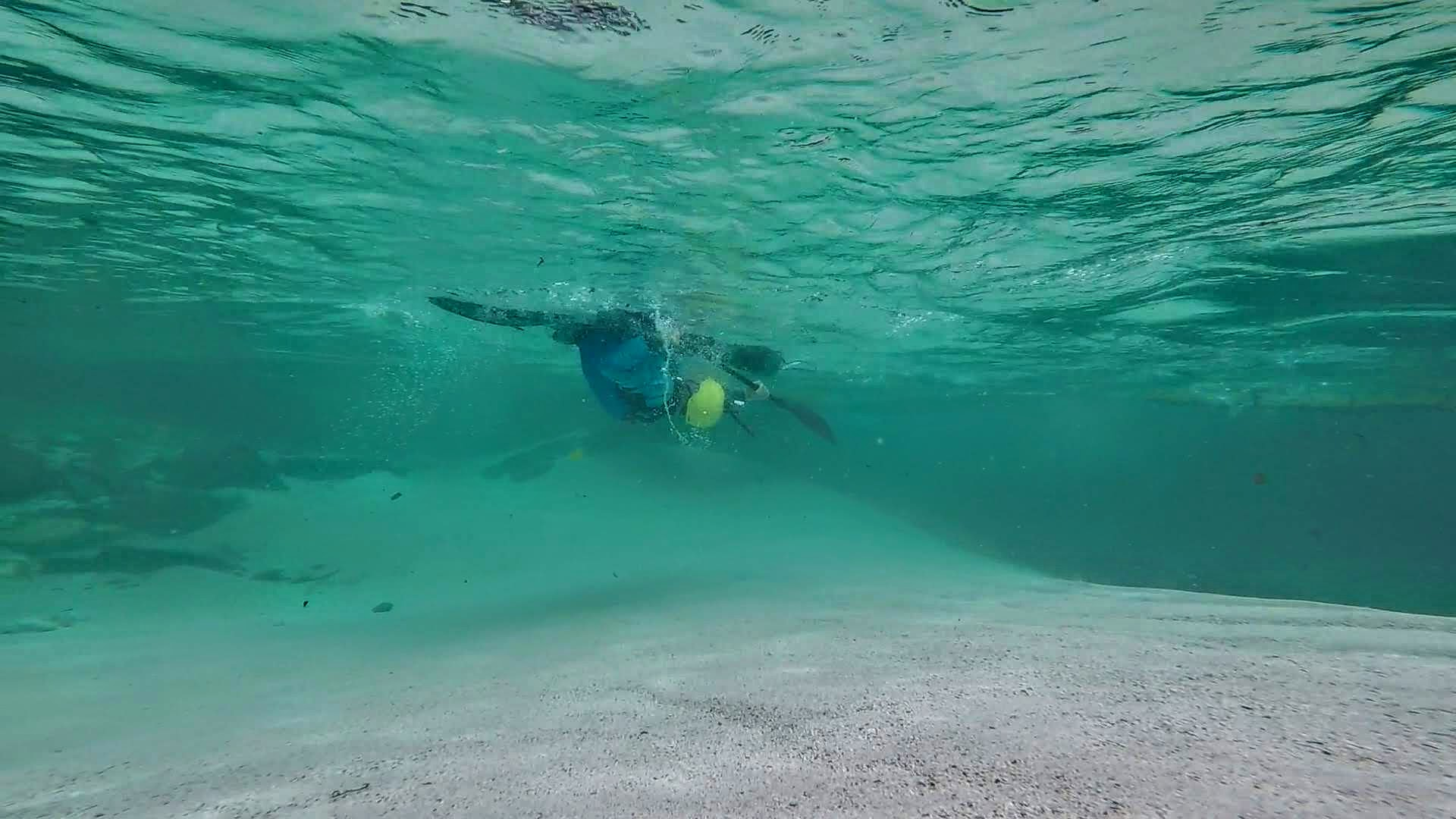 Underwater5.jpg