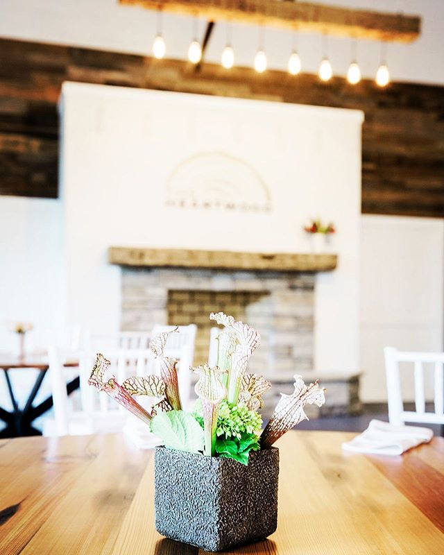 Looking for a casual chic space to have your special occasion or corporate event? The Heartwood is located downtown Lexington, has on site parking, and seating and tables for 100 included. Endless decor options available to customize the look at feel of your next event. Contact us today to set a showing to see it for yourself.  #downtownlexington #visitlex #kyproud #oldworldtimber #casualchic #kytourism #eventvenue #lexeffect