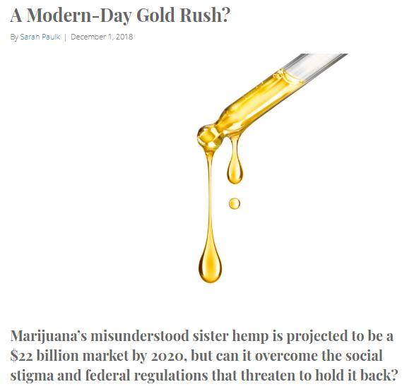 DSN Modern Day Gold Rush.JPG