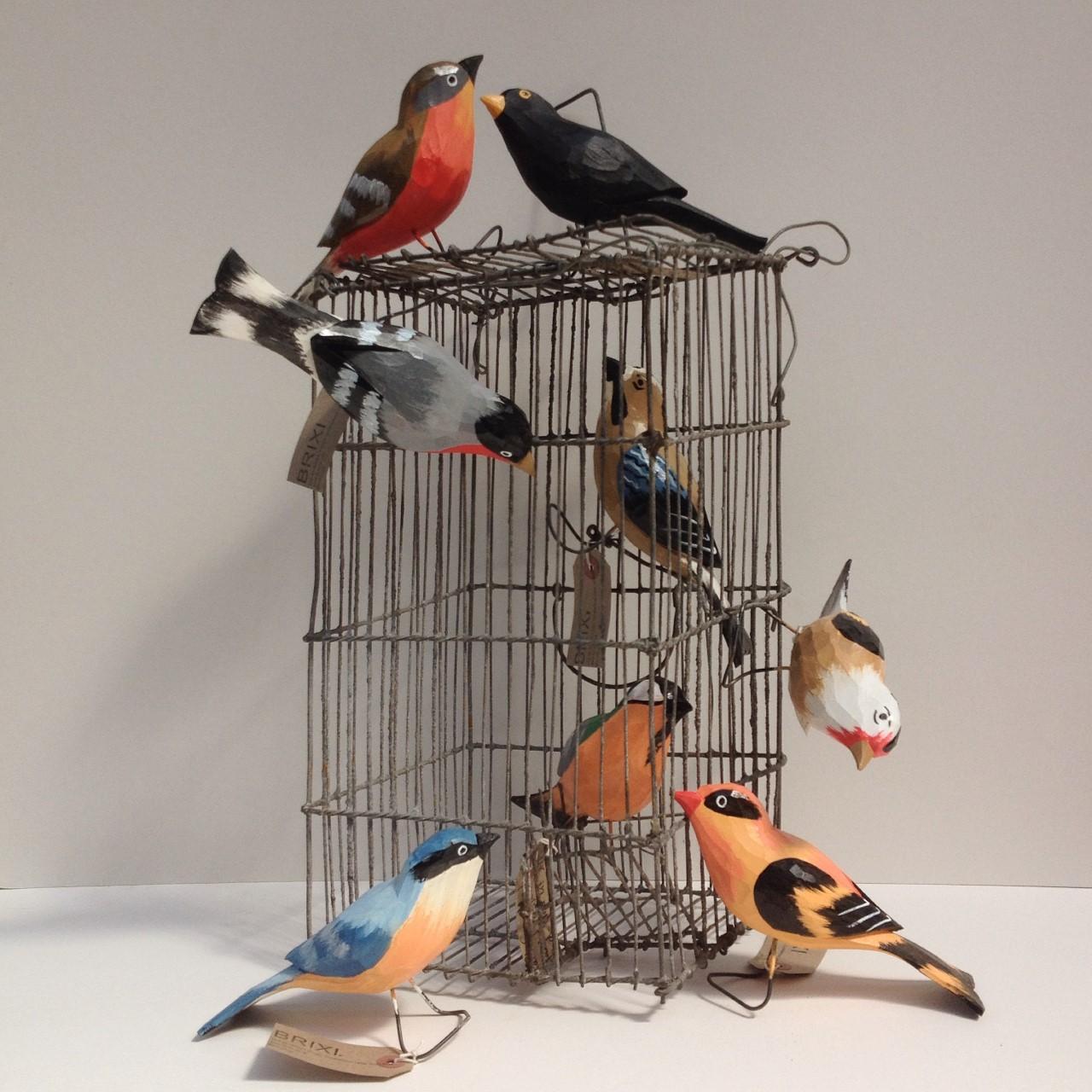 Brixi 3 birds.jpg