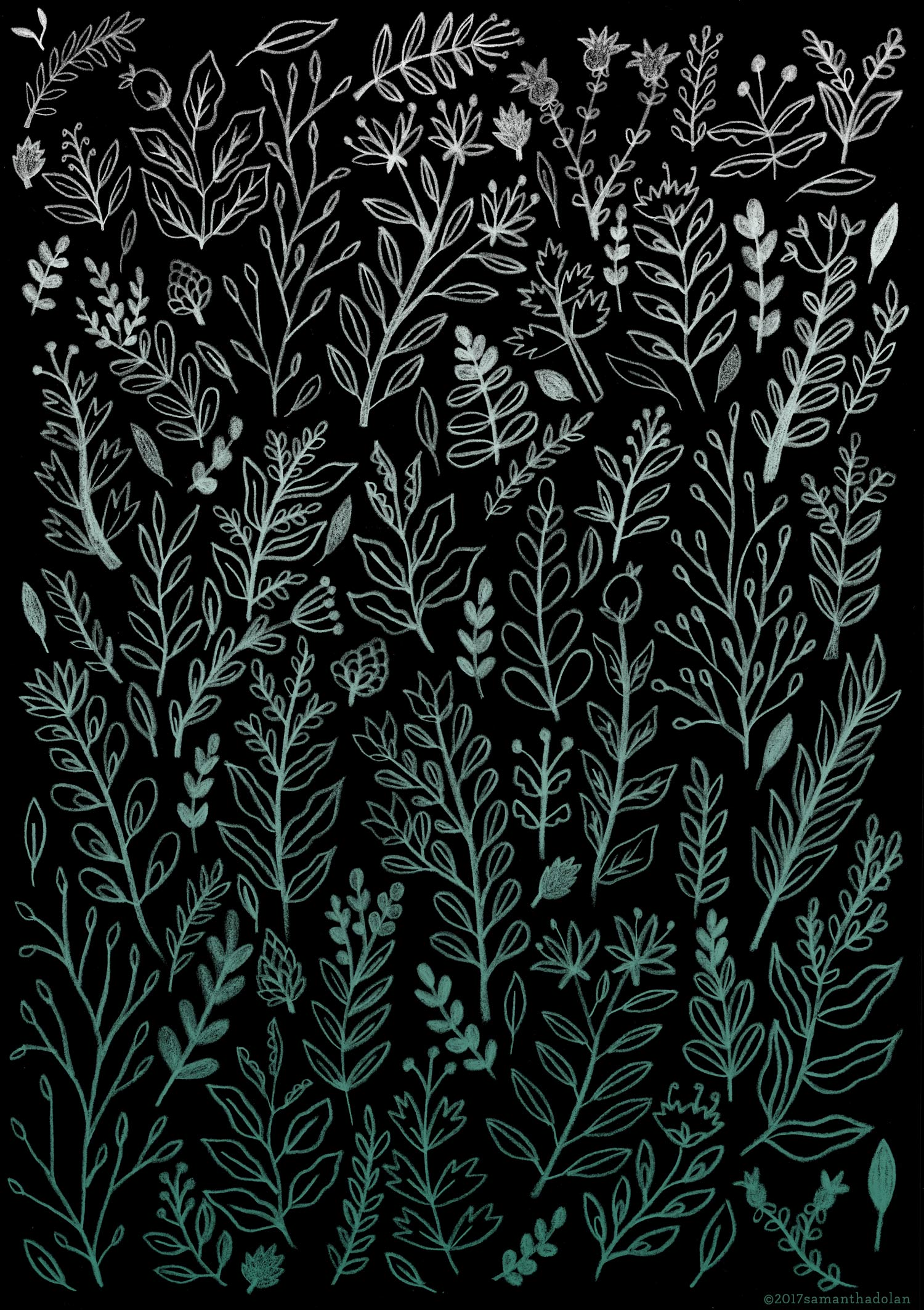 Ghost Botanical
